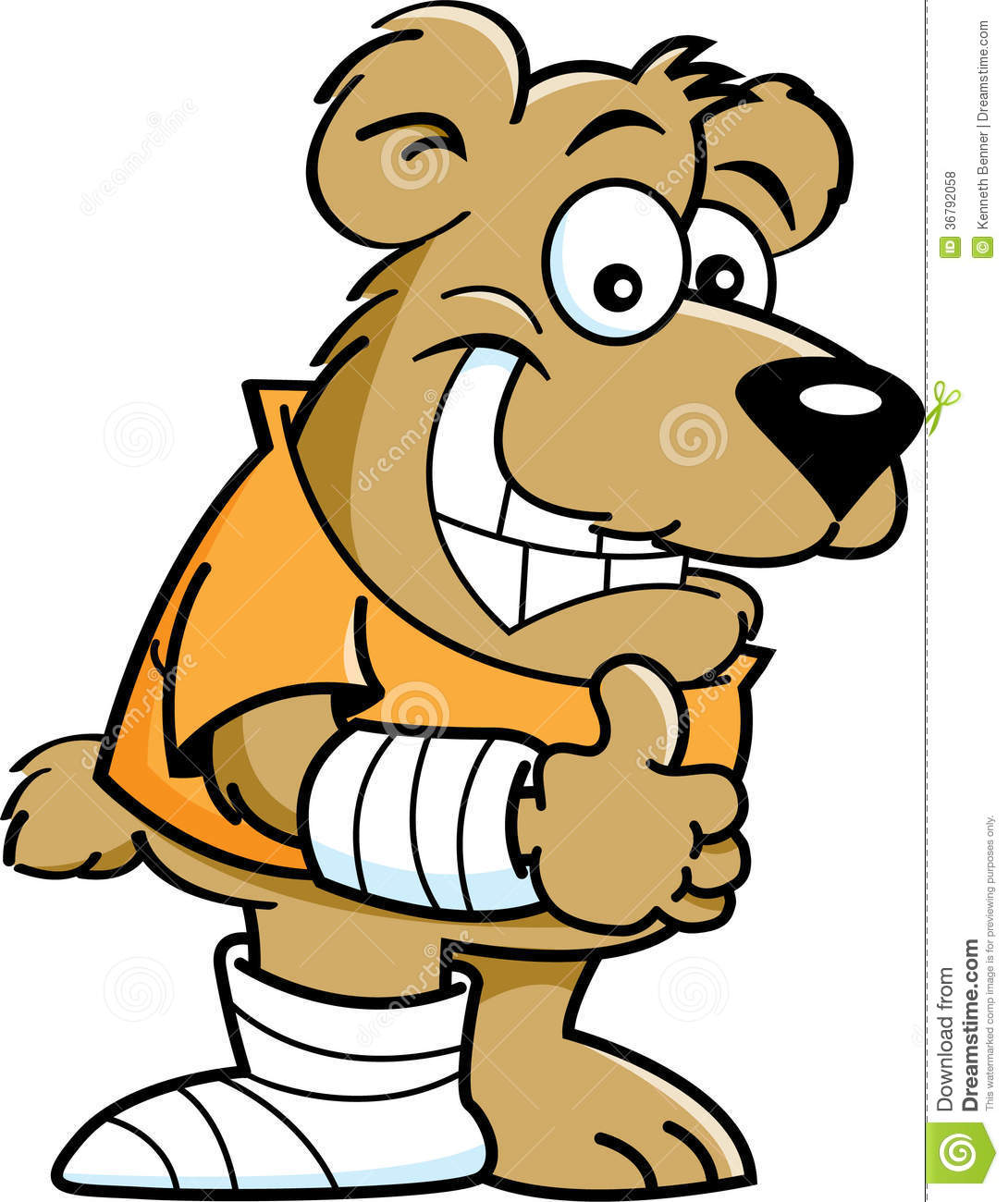 Cartoon Characters Voices : Cartoon bear with casts royalty free stock photos image