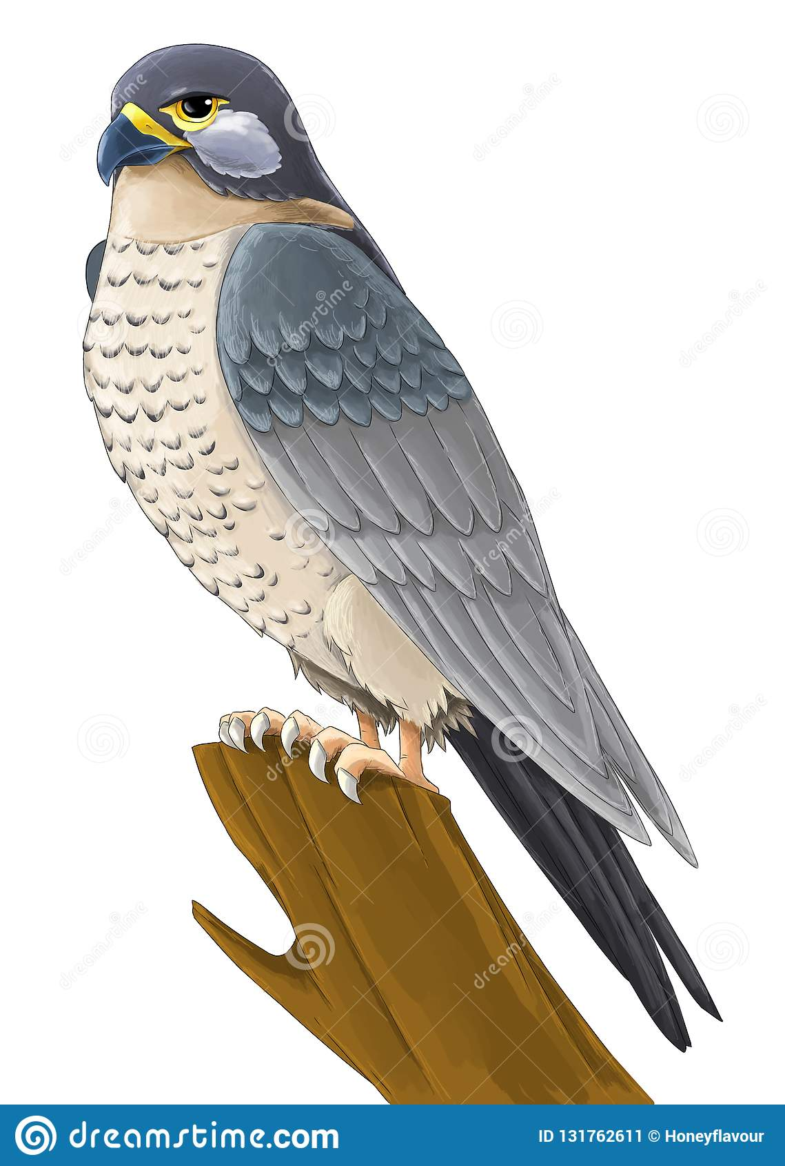 Cartoon Bird - Falcon Flying - On White Background Stock ...