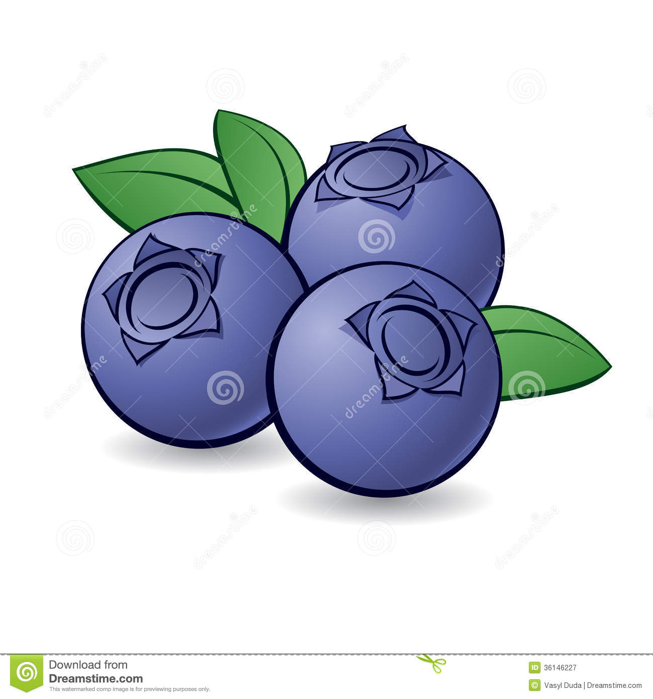 Cartoon Blueberry. Royalty Free Stock Photography - Image: 36146227