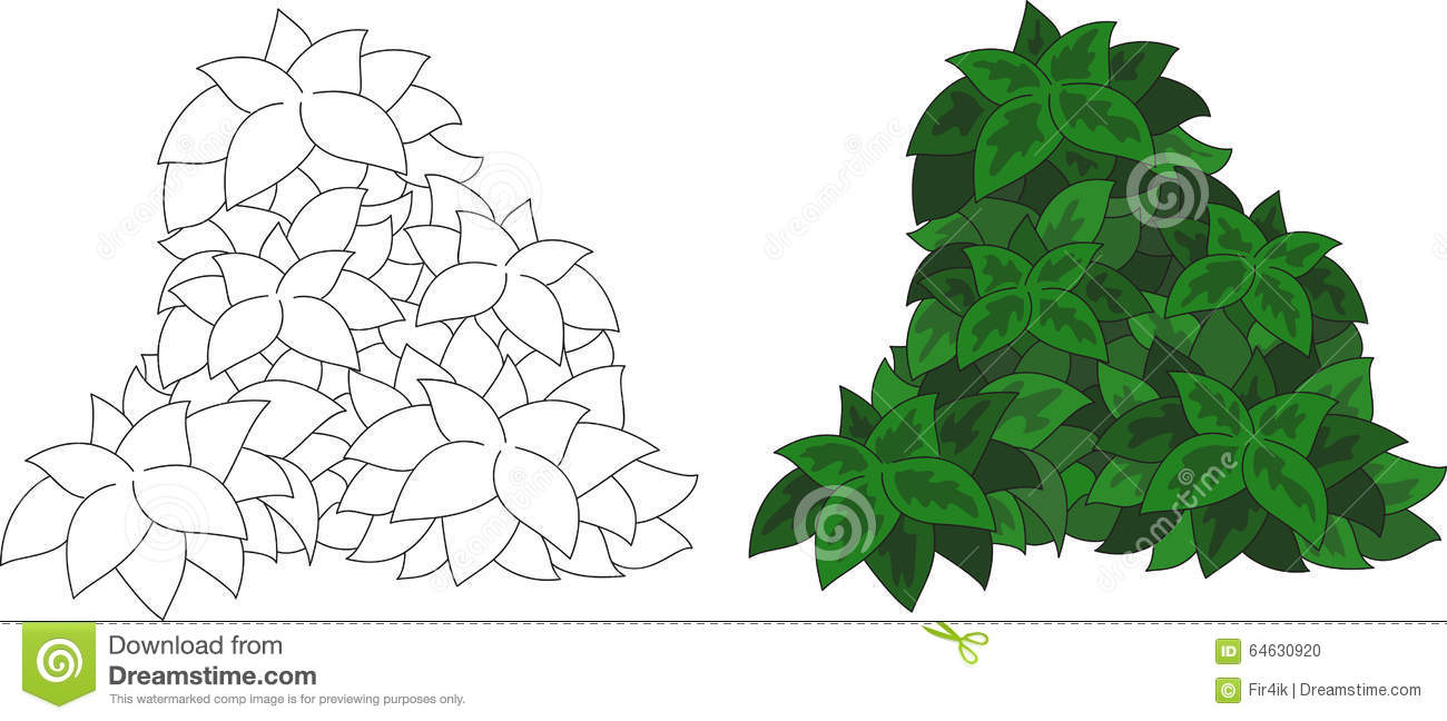 Coloring Bush And Trees, An Apple Tree. Vector Illustration Stock ...