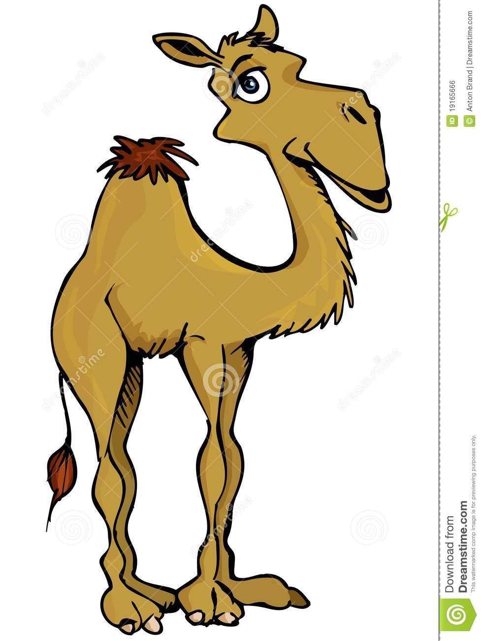 Cartoon Camel Royalty Free Stock Image - Image: 19165666