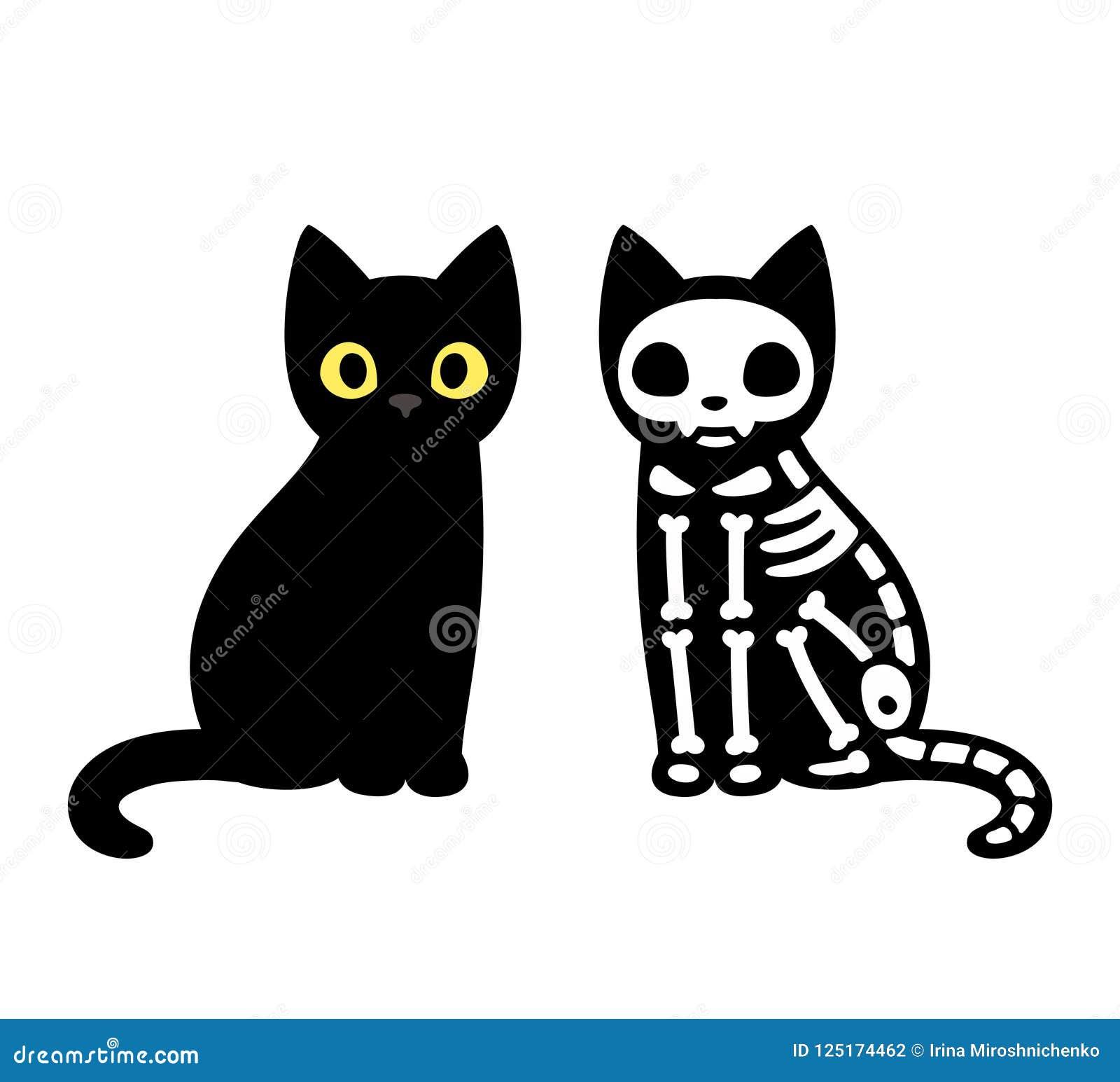 Cartoon black cat drawing with skeleton cute schrodingers cat illustration funny halloween clip art design