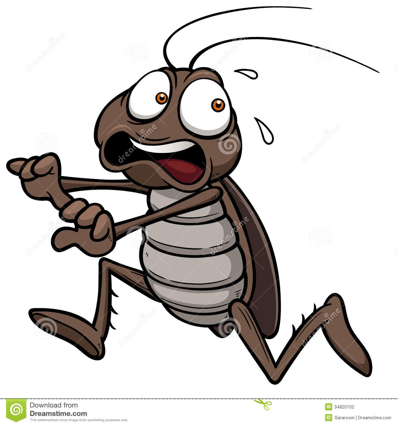 Cartoon Cockroach Stock Photography - Image: 34820102