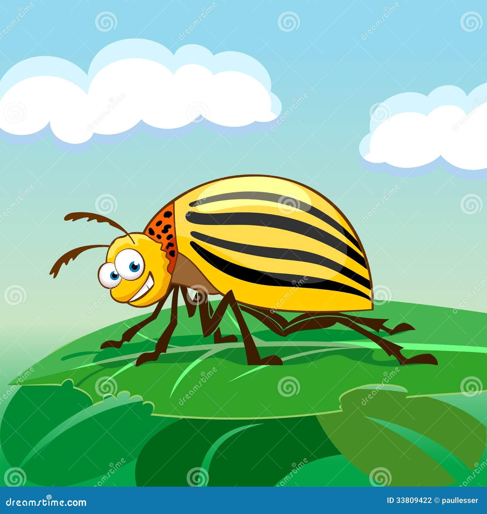 Колорадский жук картинки смешные