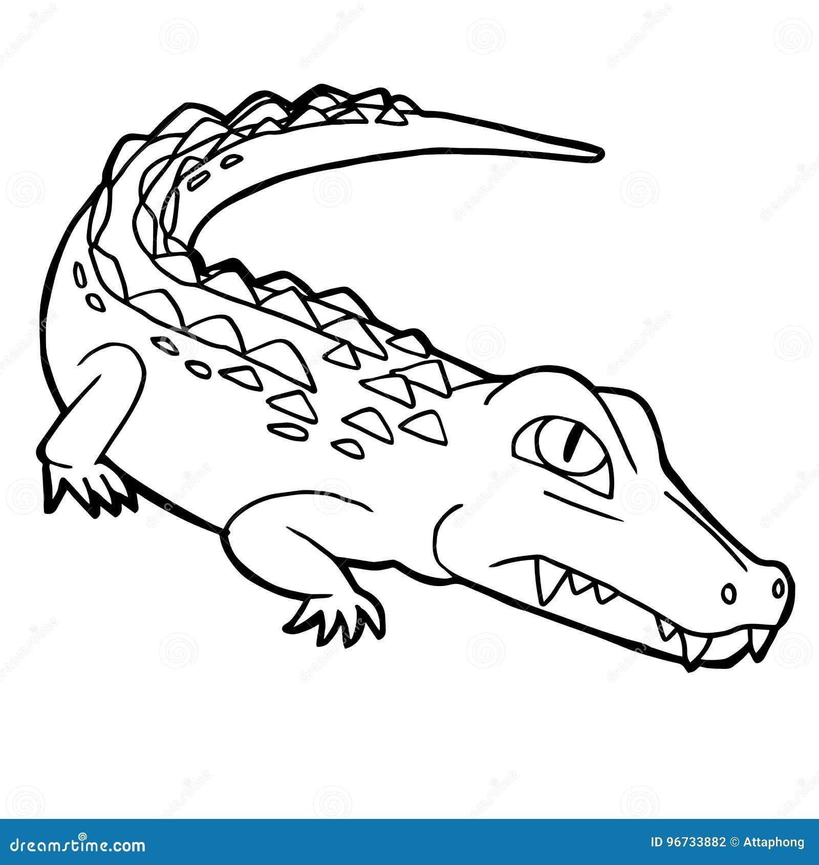 download cartoon cute crocodile coloring page vector stock vector illustration of cartoon caiman