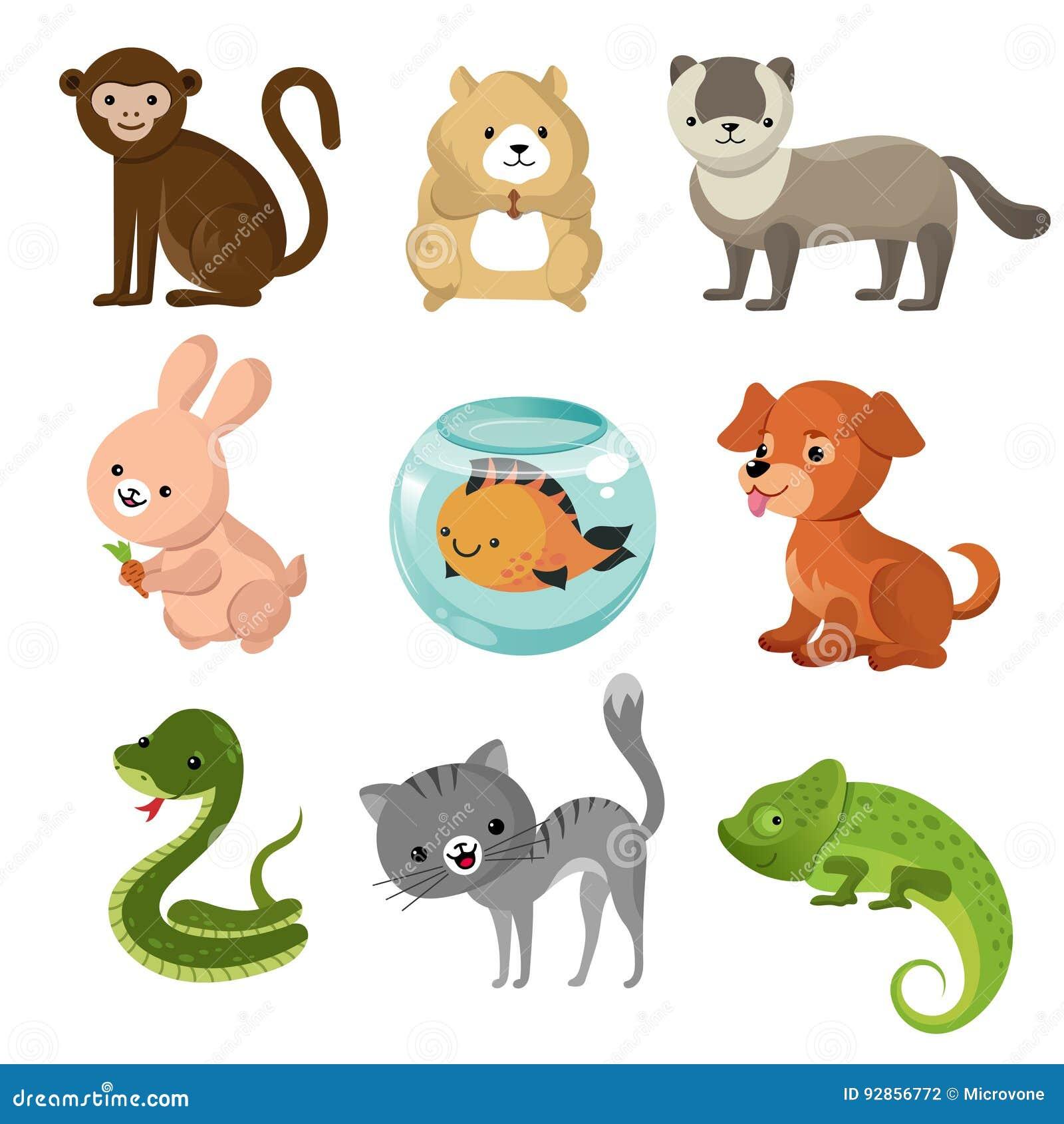 Cartoon Cute Home Pets Vector Collection Stock