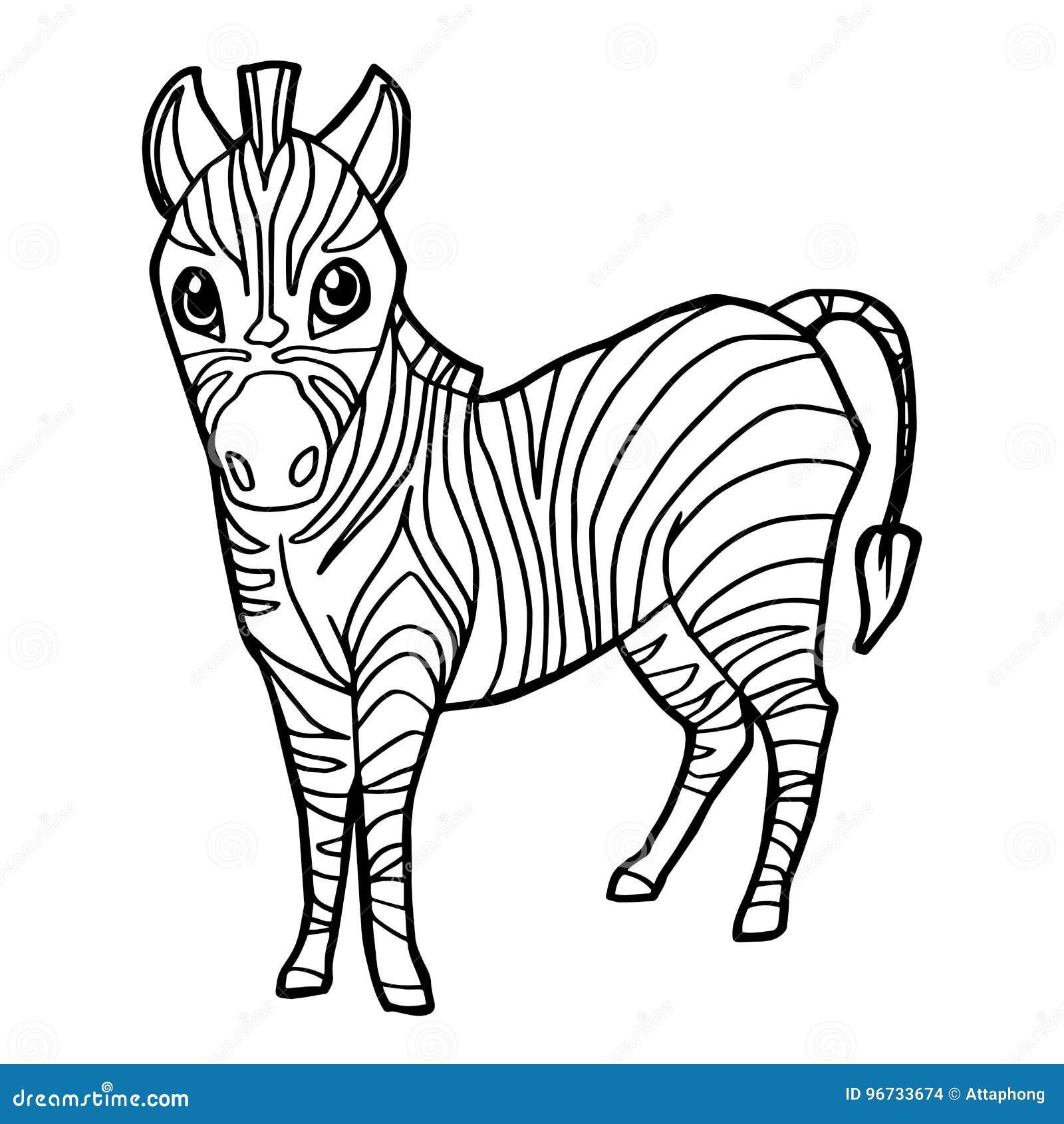 Download Cartoon Cute Zebra Coloring Page Vector Stock