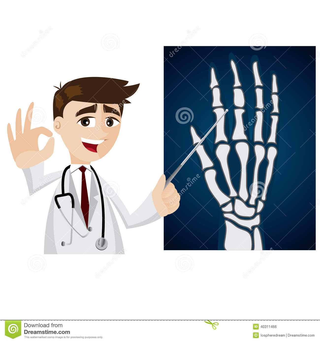 Cartoon Doctor With X-ray Film Stock Vector - Image: 40311466
