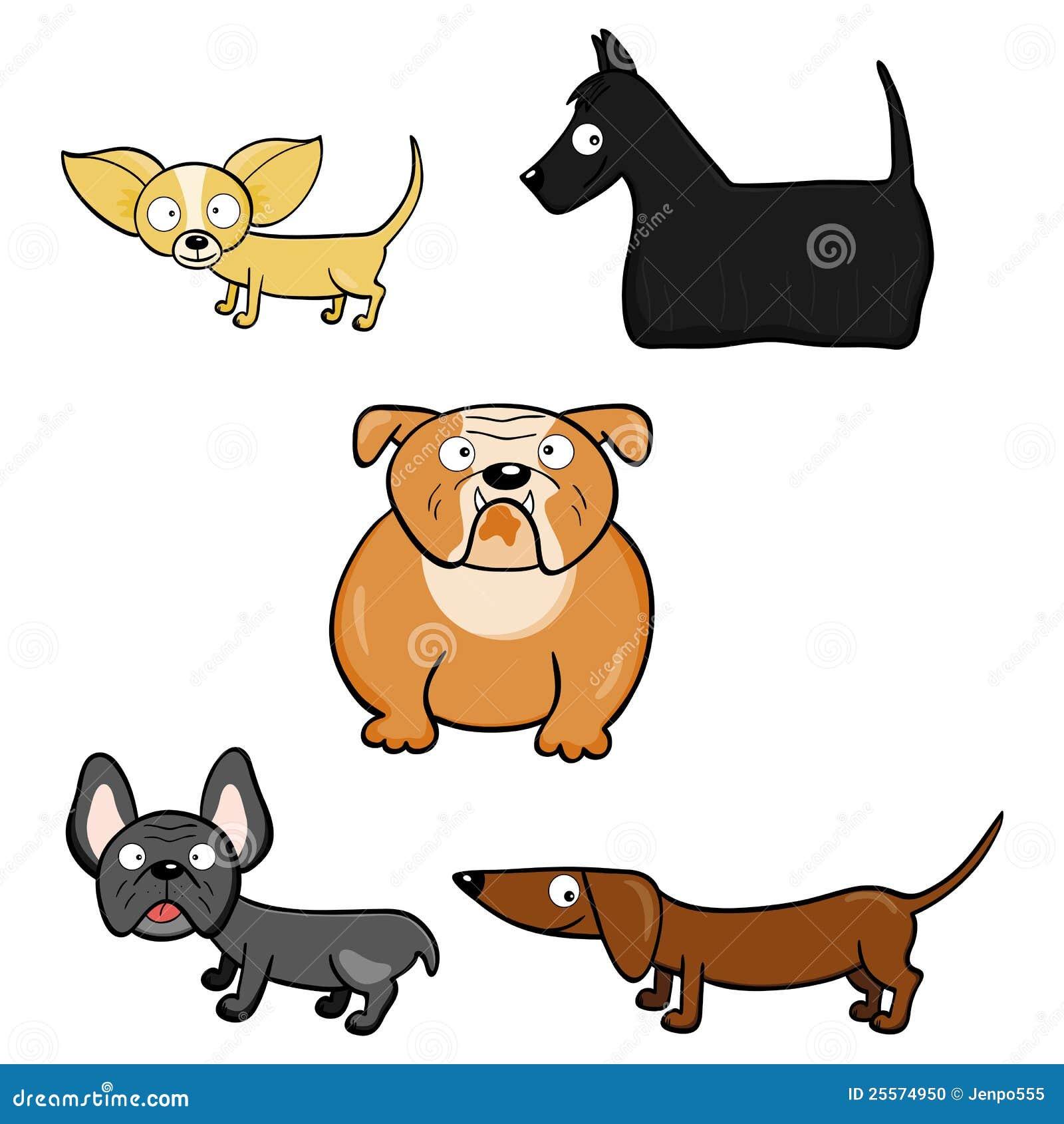 chihuahua dog stock 29 chihuahua dog stock 31 chihuahua dog stock 33