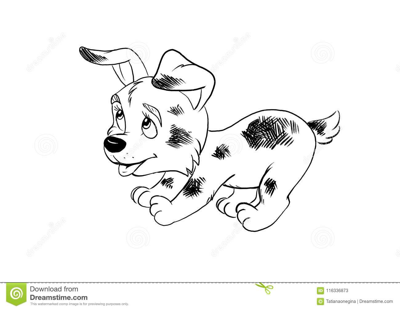 Cartoon drawing for coloring book with dalmatianbreed puppy