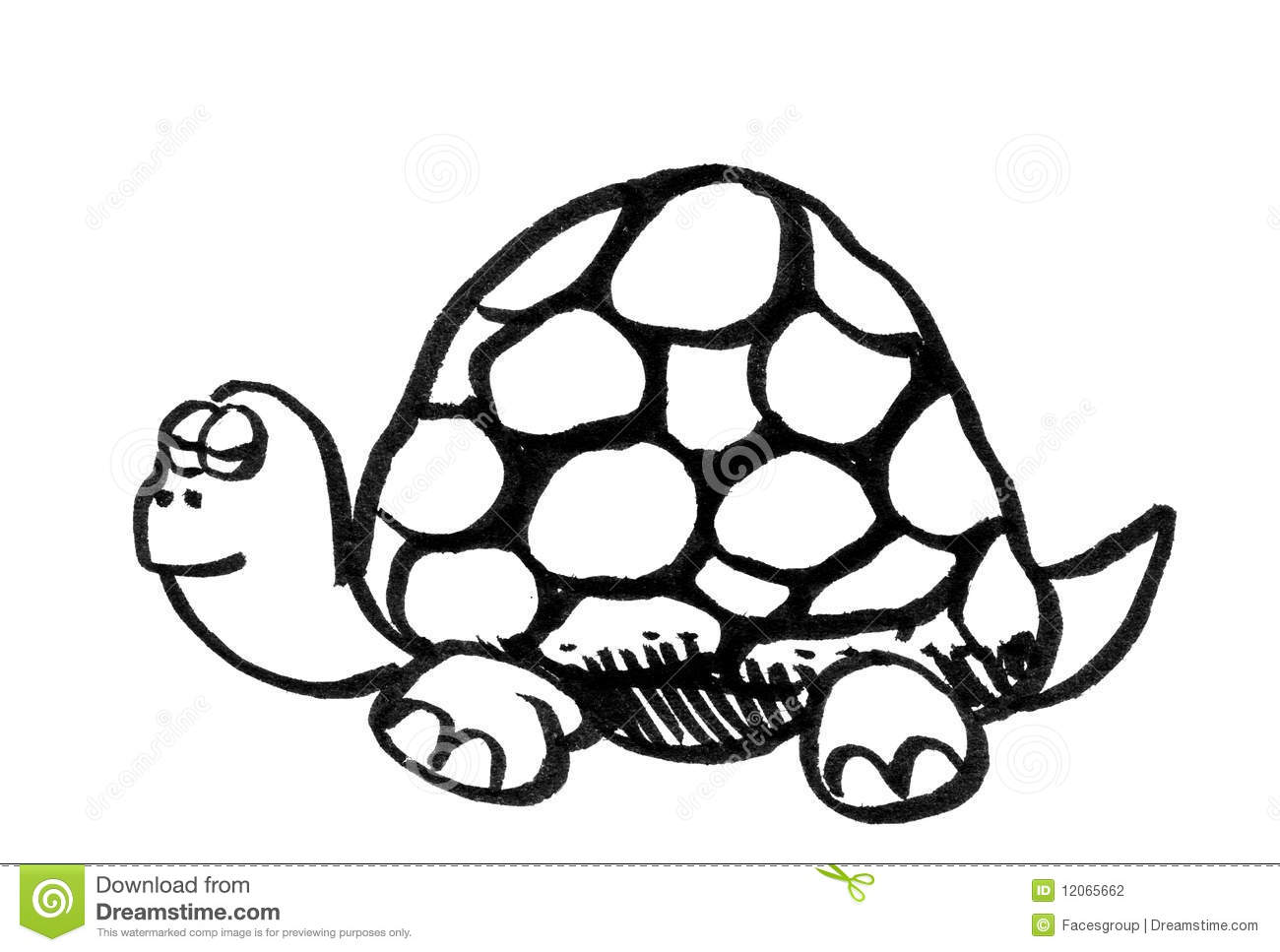 Cartoon Drawing Of A Turtle Stock Photography Image