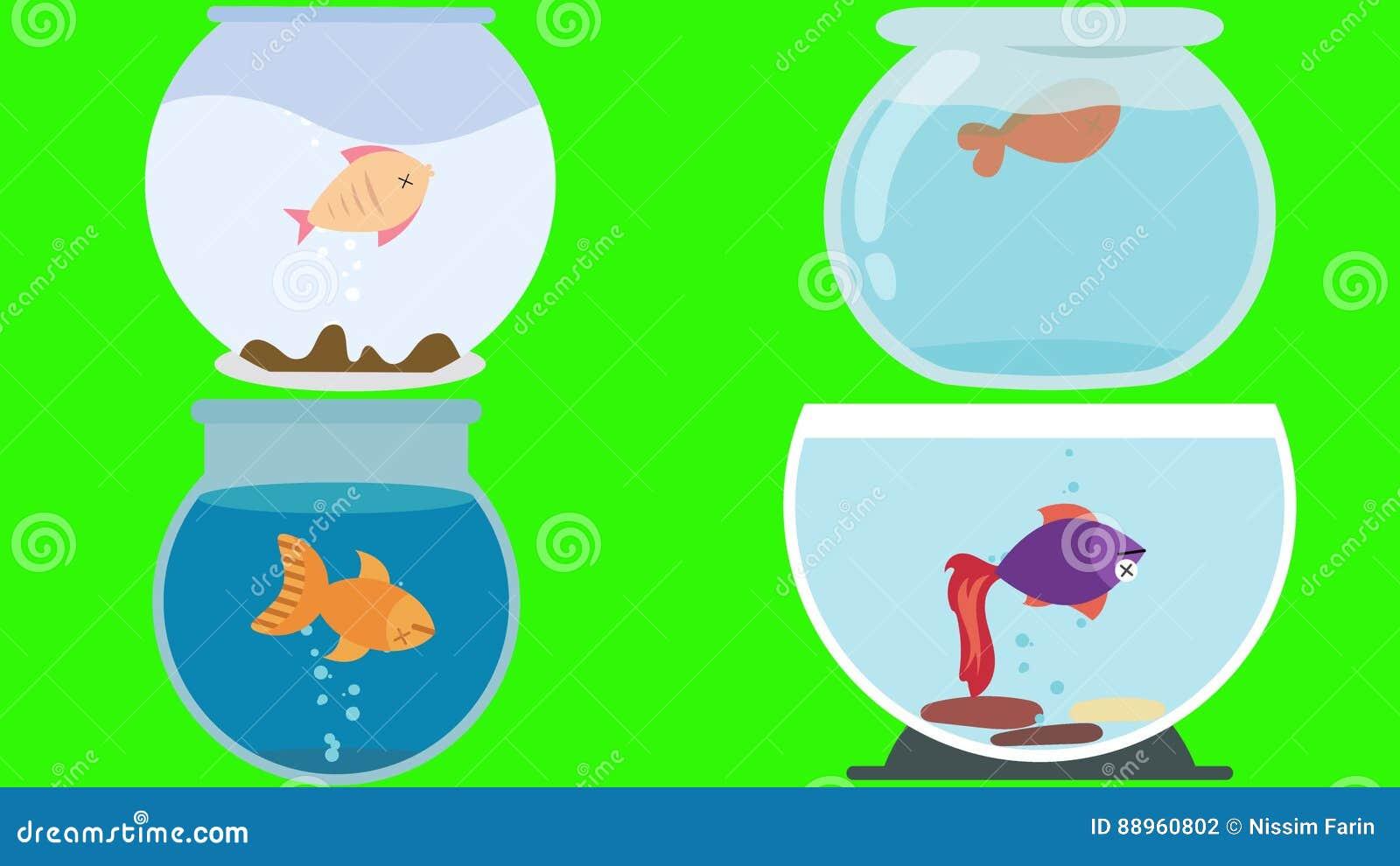 cartoon fish bowls with dead fish on a green screen stock footage rh dreamstime com dead fish cartoon bones Cartoon Fish Clip Art