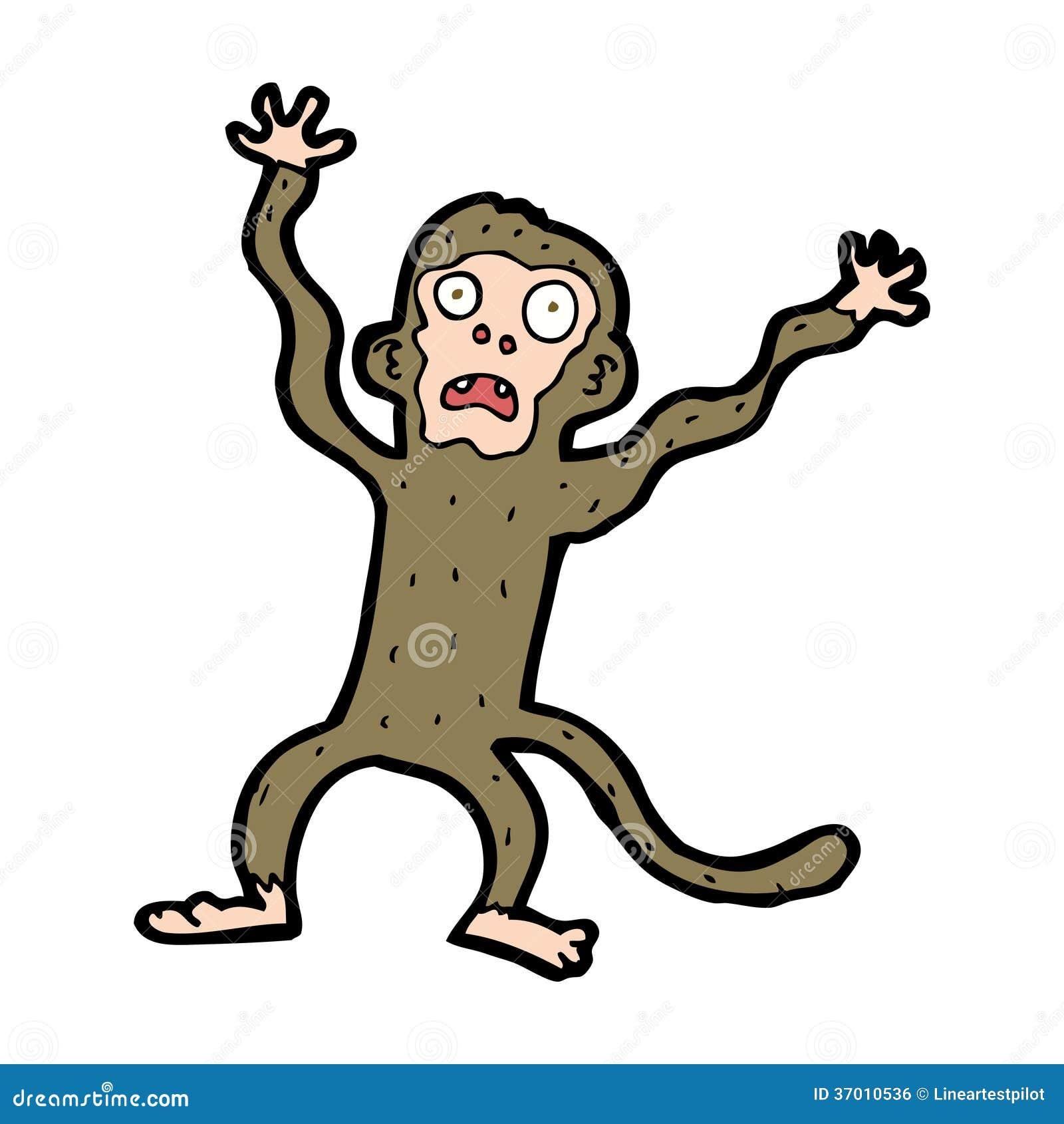 Cartoon Monkeys Gallery 6  |Scared Monkey Animation