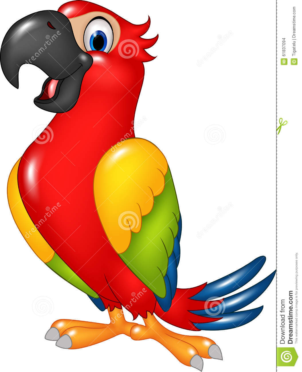 Cartoon Funny Parrot Isolated On White Background Stock