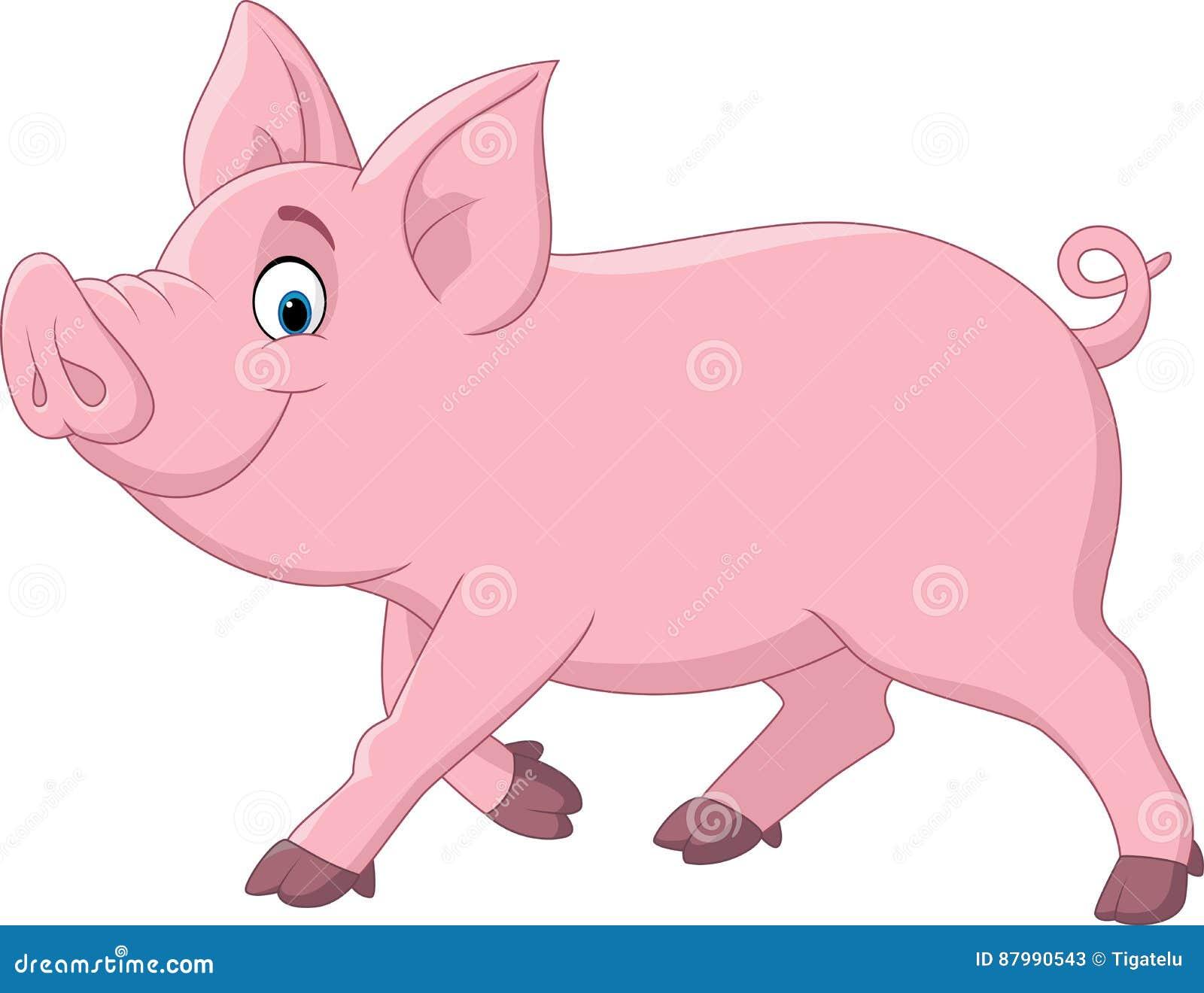 Cartoon funny pig