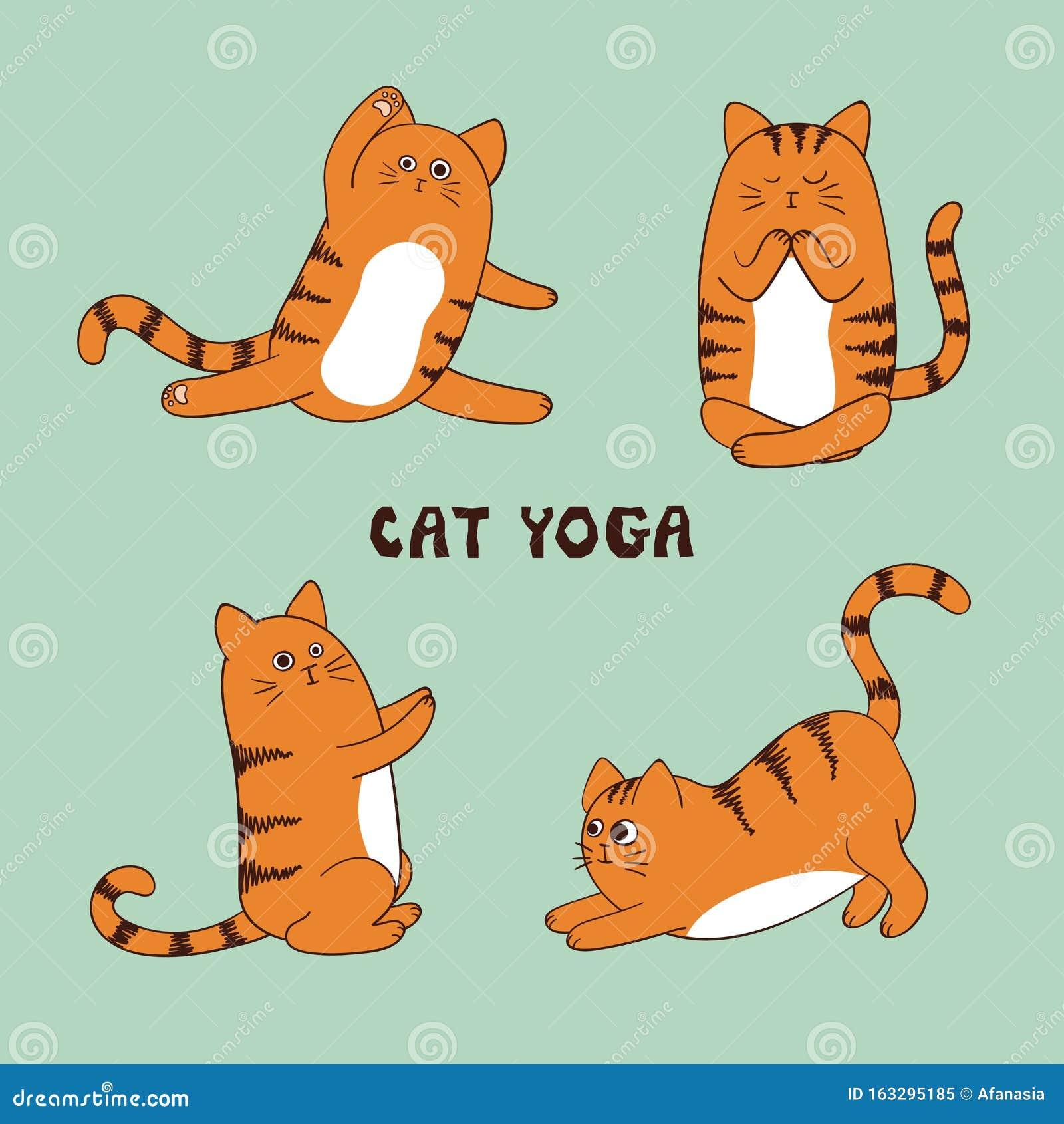 Cartoon Funny Yoga Cat Vector Illustration Animal Fitness Stock Vector Illustration Of Character Drawing 163295185