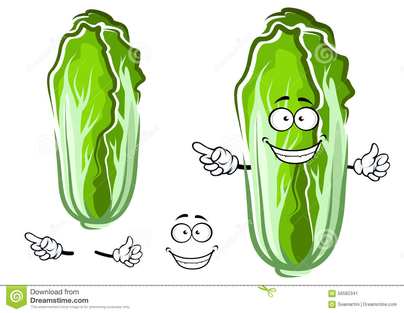 Cartoon Green Chinese Cabbage Vegetable Stock Vector ...