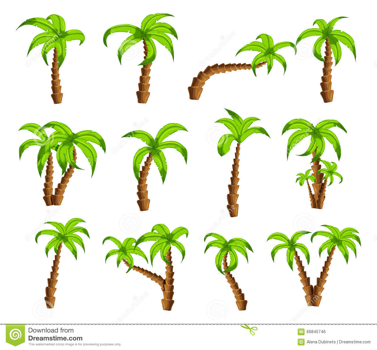 Cartoon Green Palm Trees On A White Background. Set Of ...
