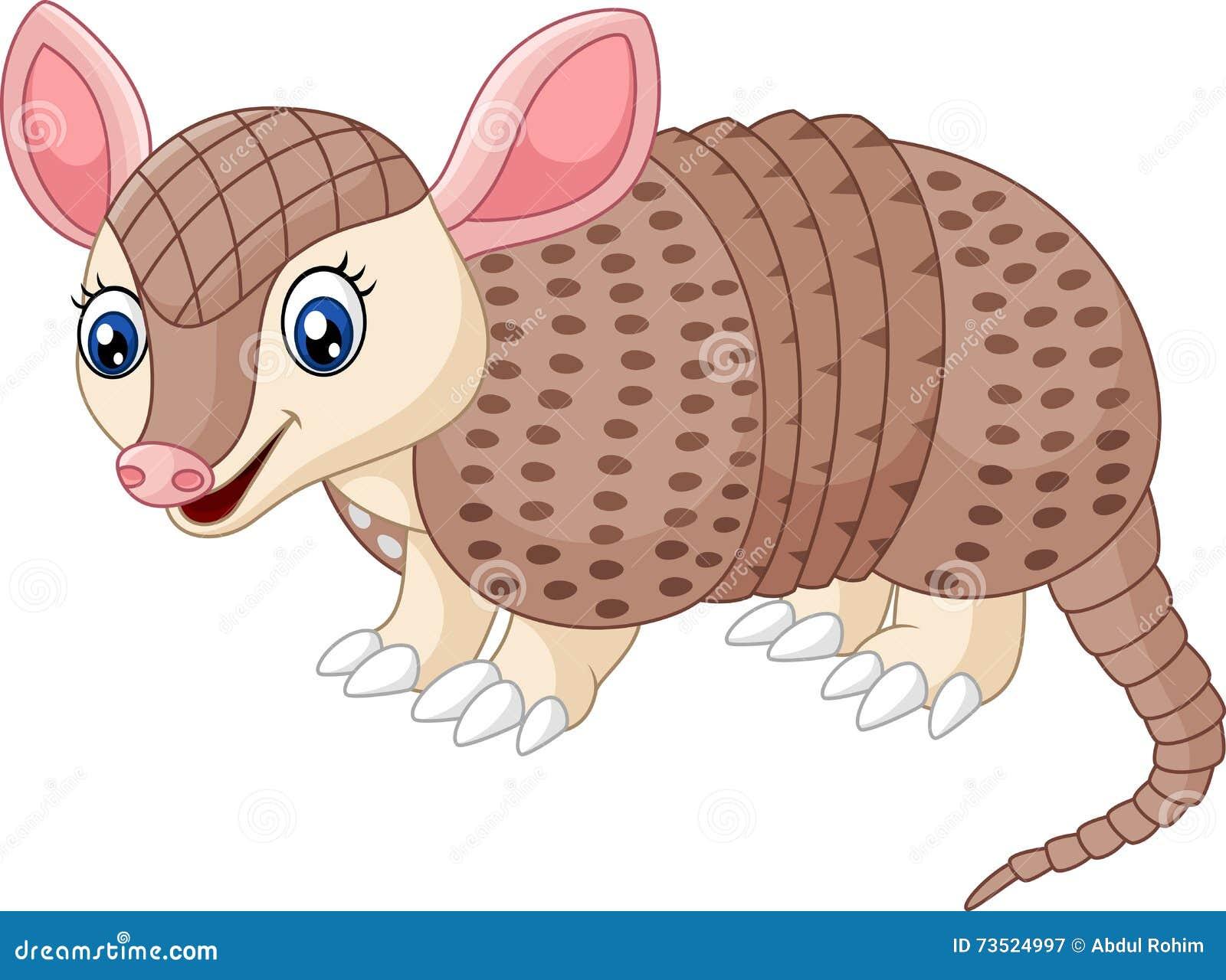 armadillo stock illustrations – 387 armadillo stock illustrations
