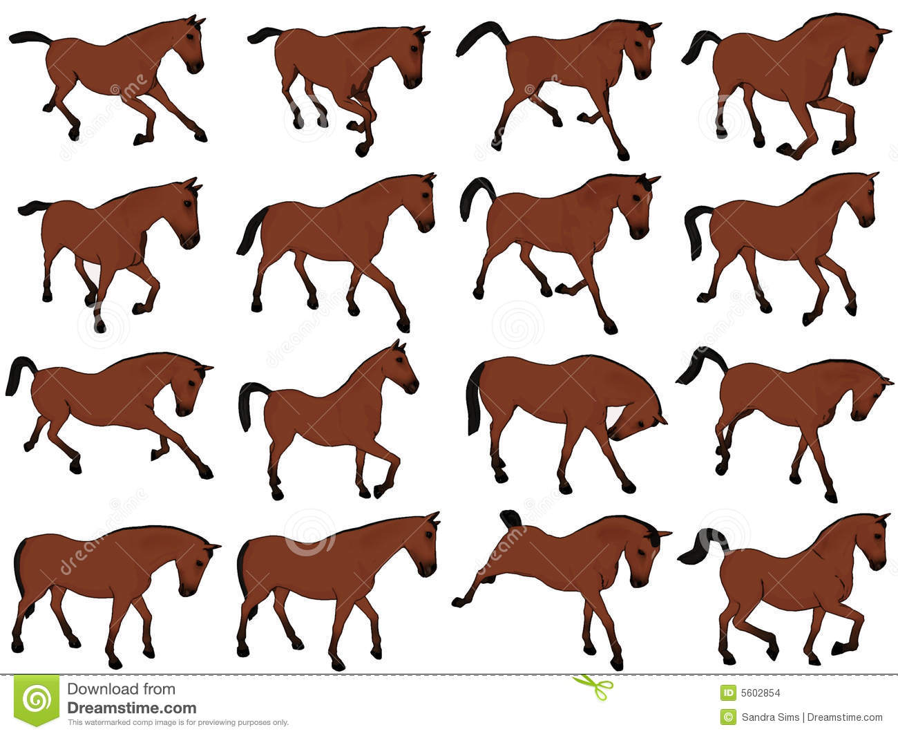 Stock Images Cartoon Horse Assorted Poses Image5602854 on computer generated artwork