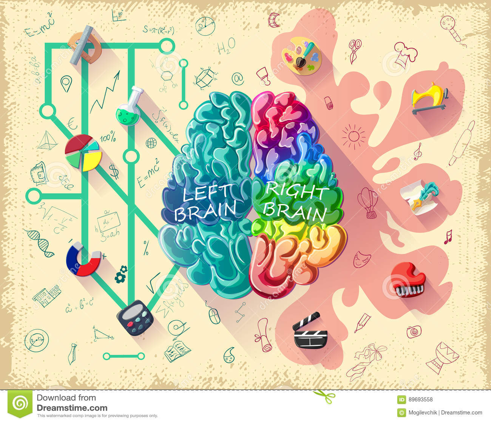 Cartoon Human Brain Diagram Concept Stock Vector - Illustration of ...