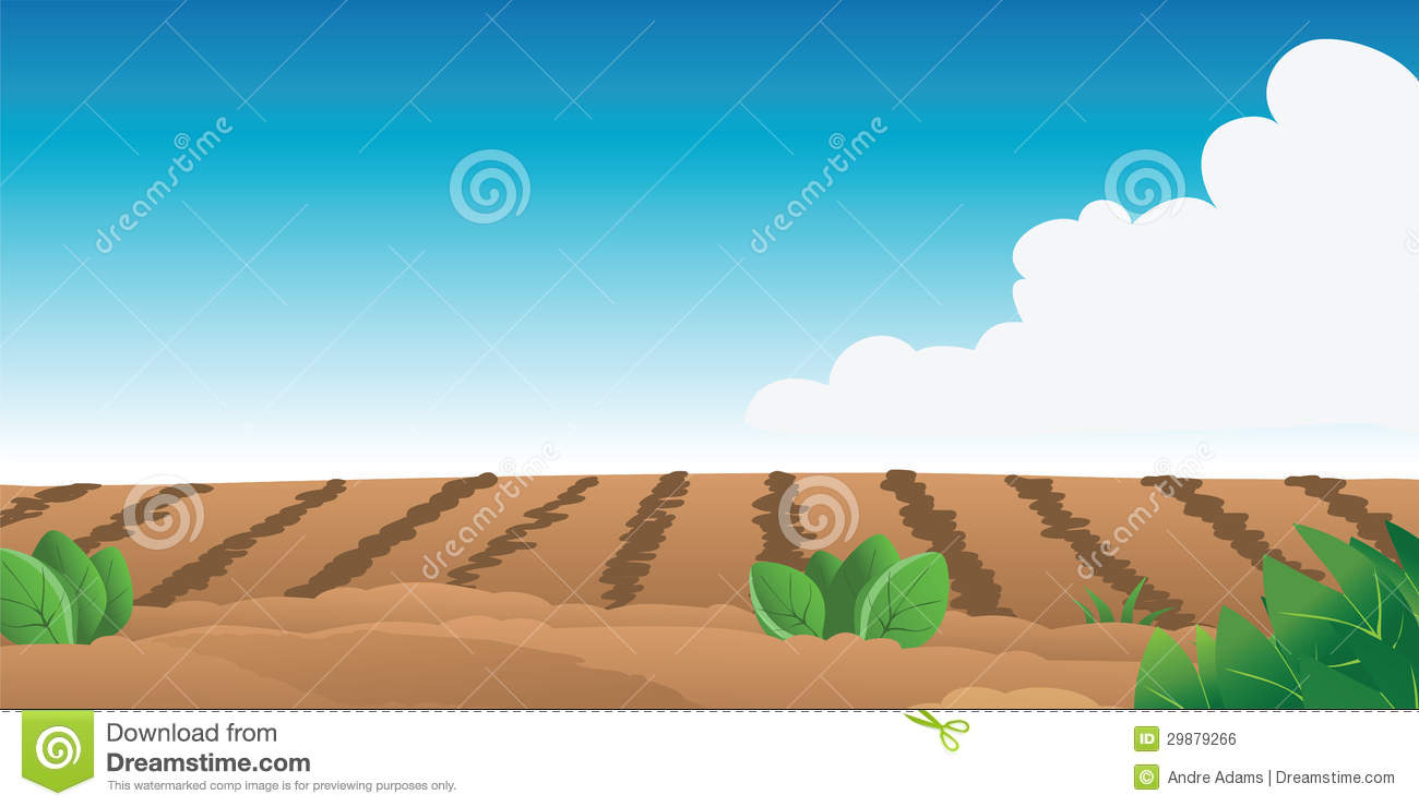 Farm Field Royalty Free Stock Image Image 29879266
