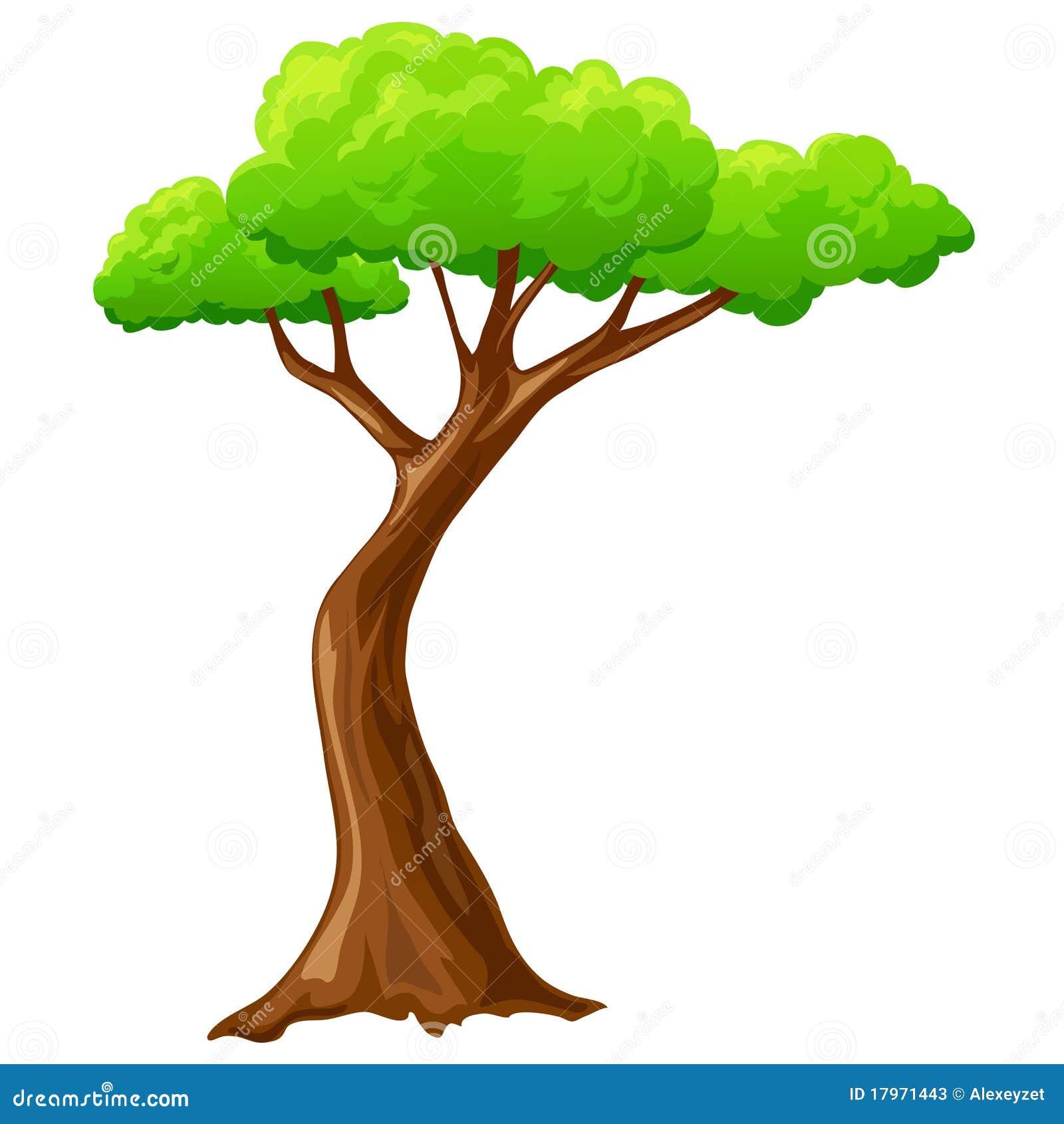 Cartoon Isolated Tree On White Background Stock Vector ...