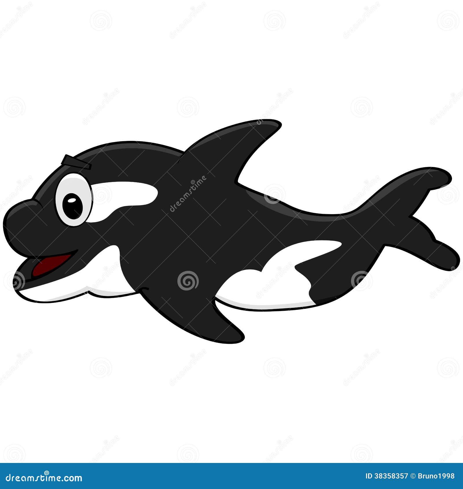 cartoon-killer-... Orca Whale Cartoon