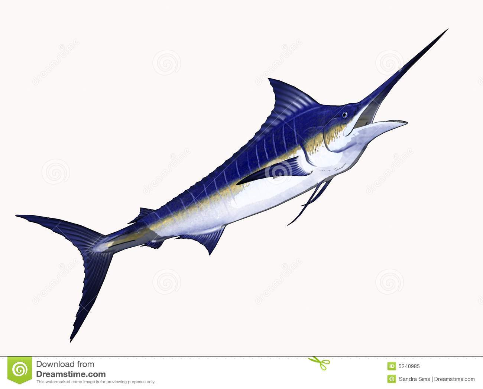 cartoon marlin royalty free stock photo cartoondealer swordfish clip art svg swordfish clipart bw