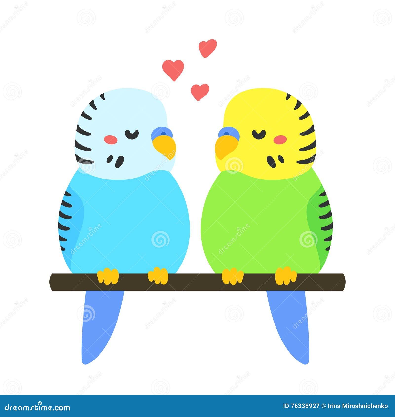 budgie stock illustrations 203 budgie stock illustrations rh dreamstime com green parakeet clipart Cartoon Parakeet