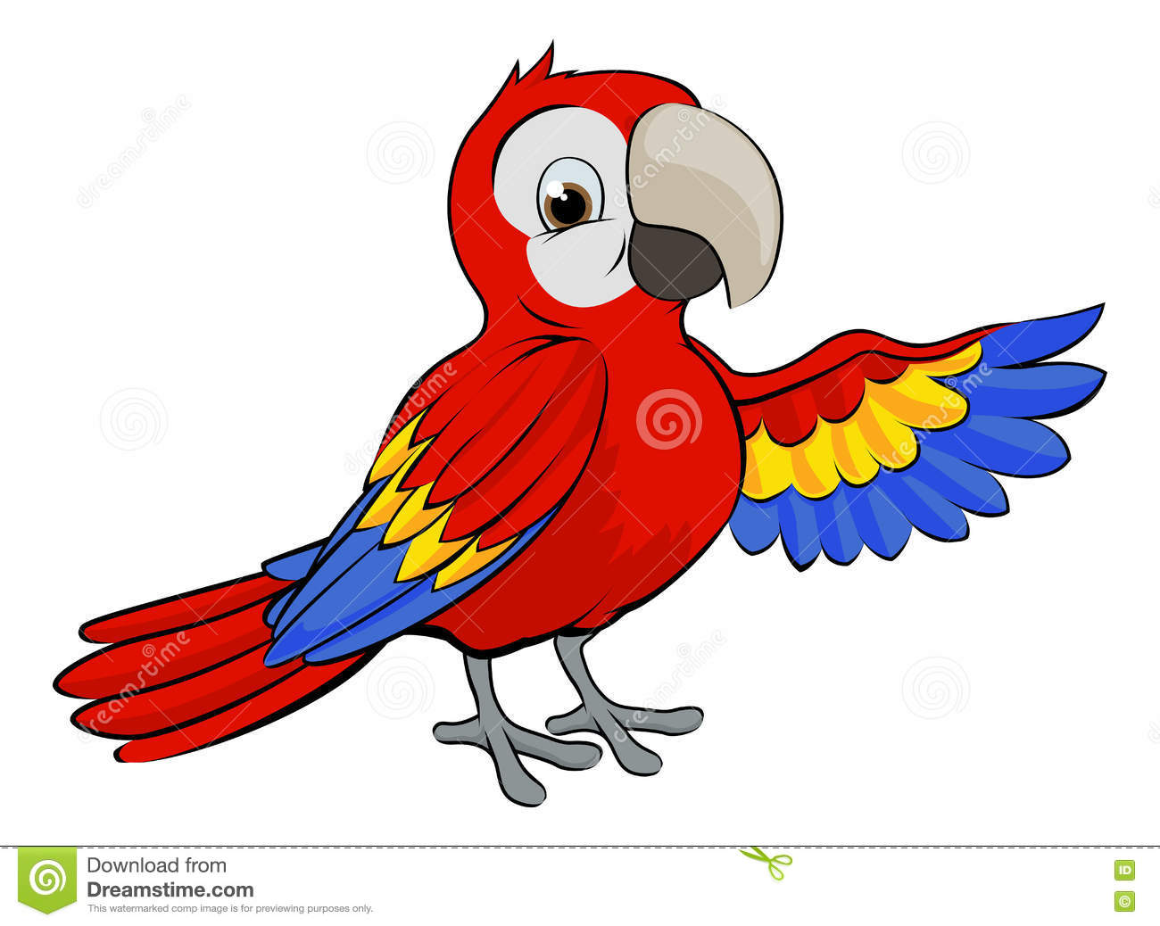 Happy cockatoo cartoon pictures to pin on pinterest