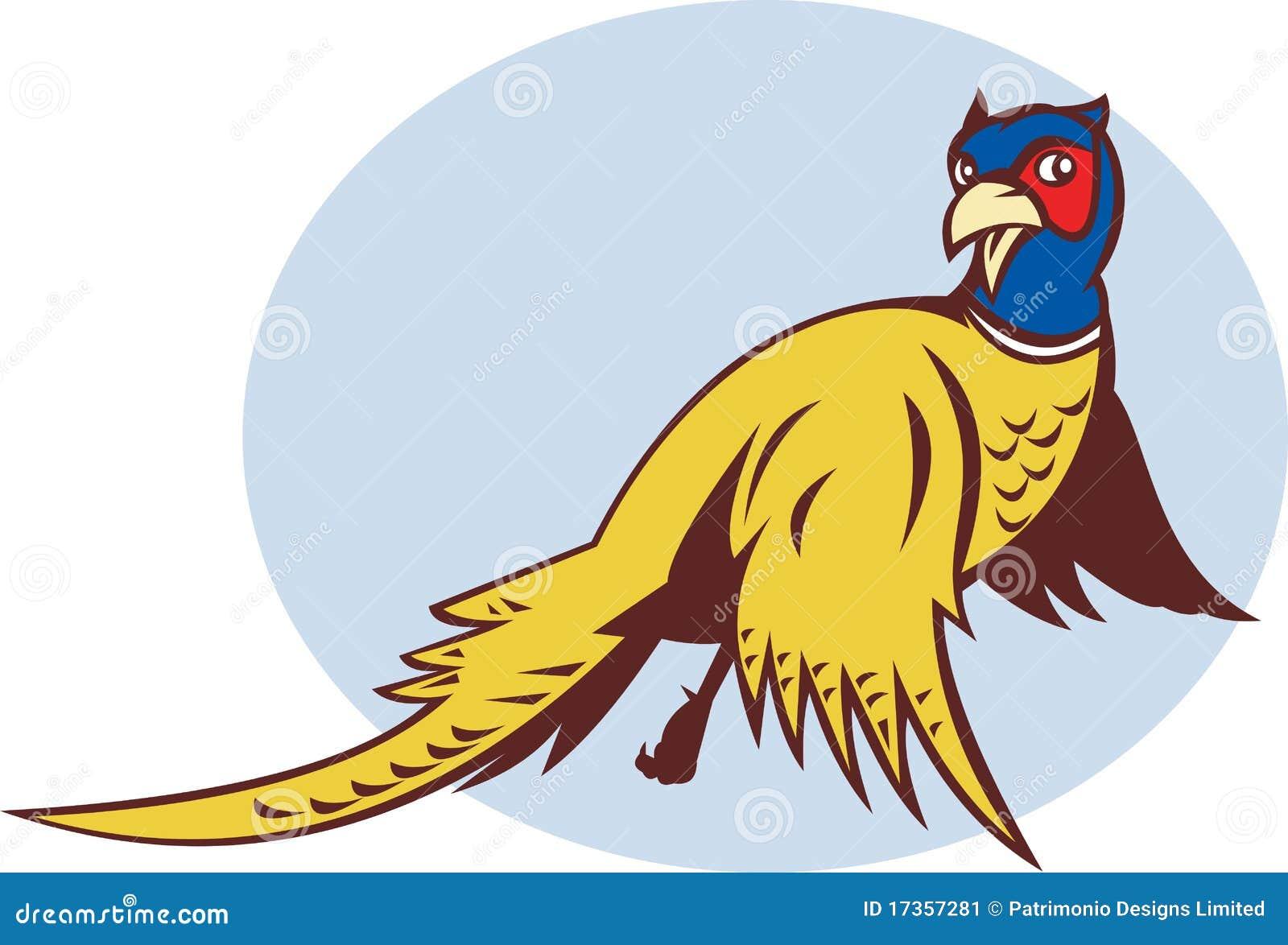 Cartoon Pheasant Bird Flying Stock Image - Image: 17357281