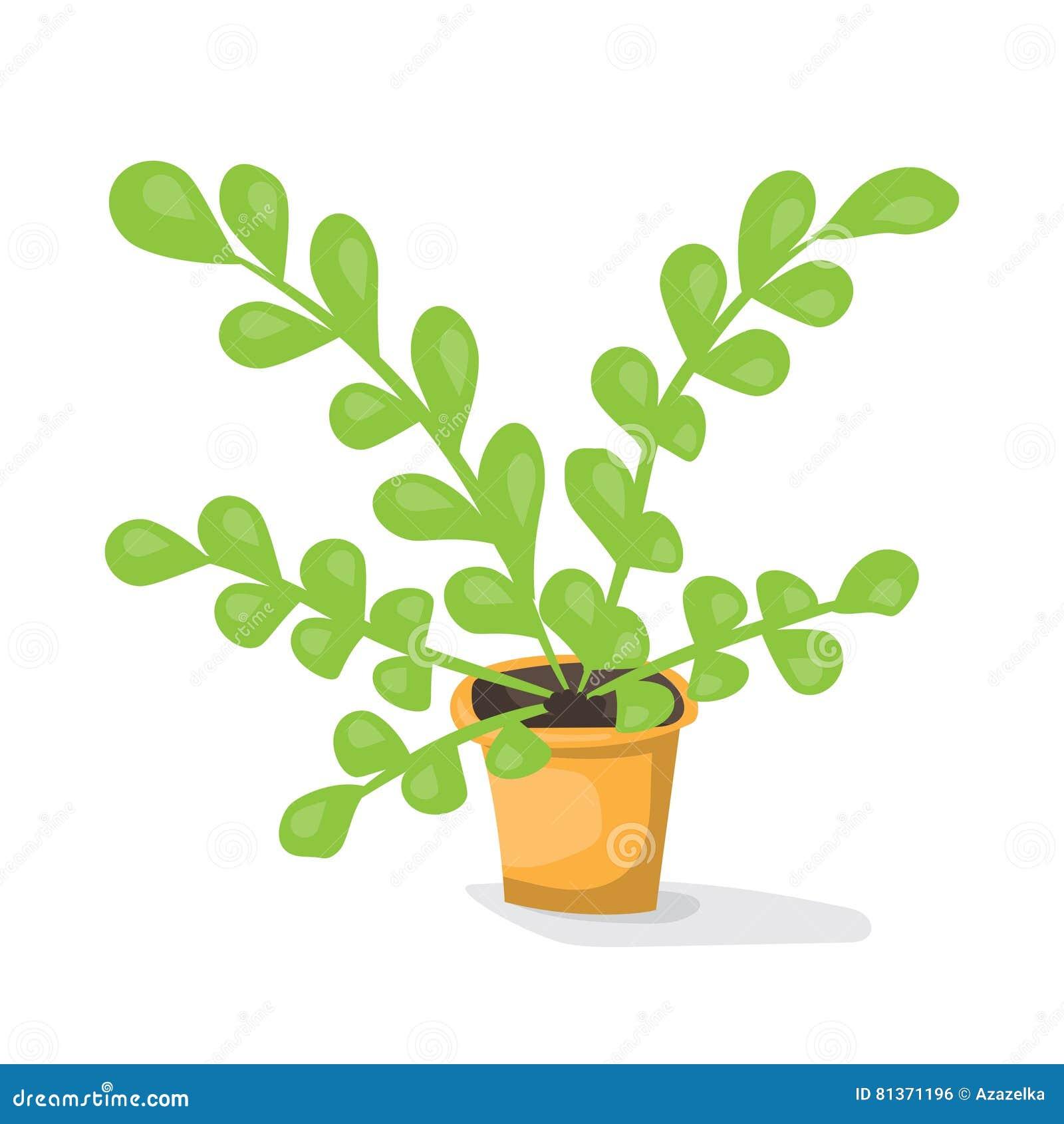 Cartoon Plant In Pot . Flat Vector Illustration. Green
