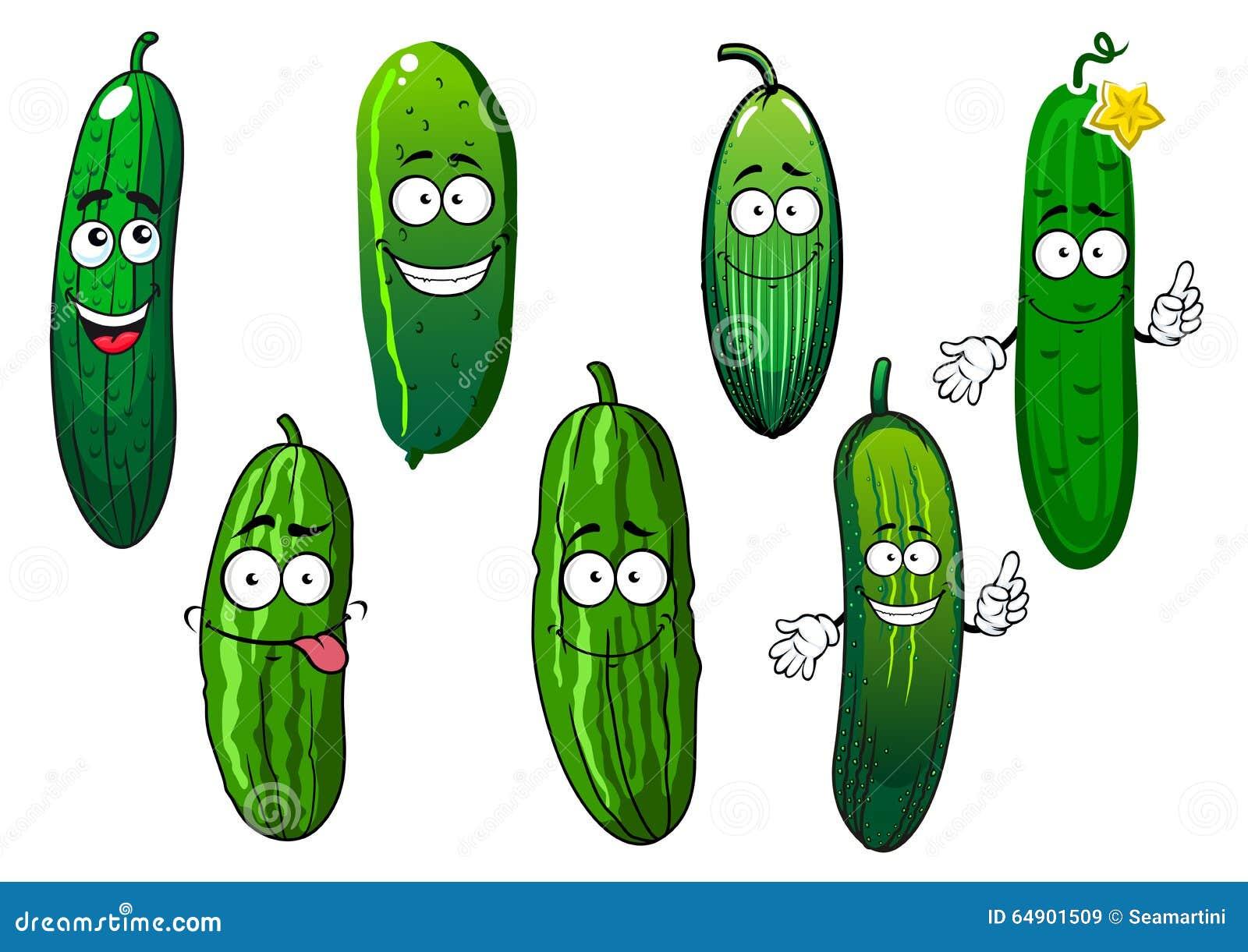 Cartoon Ripe Green Organic Cucumber Vegetables Stock ...