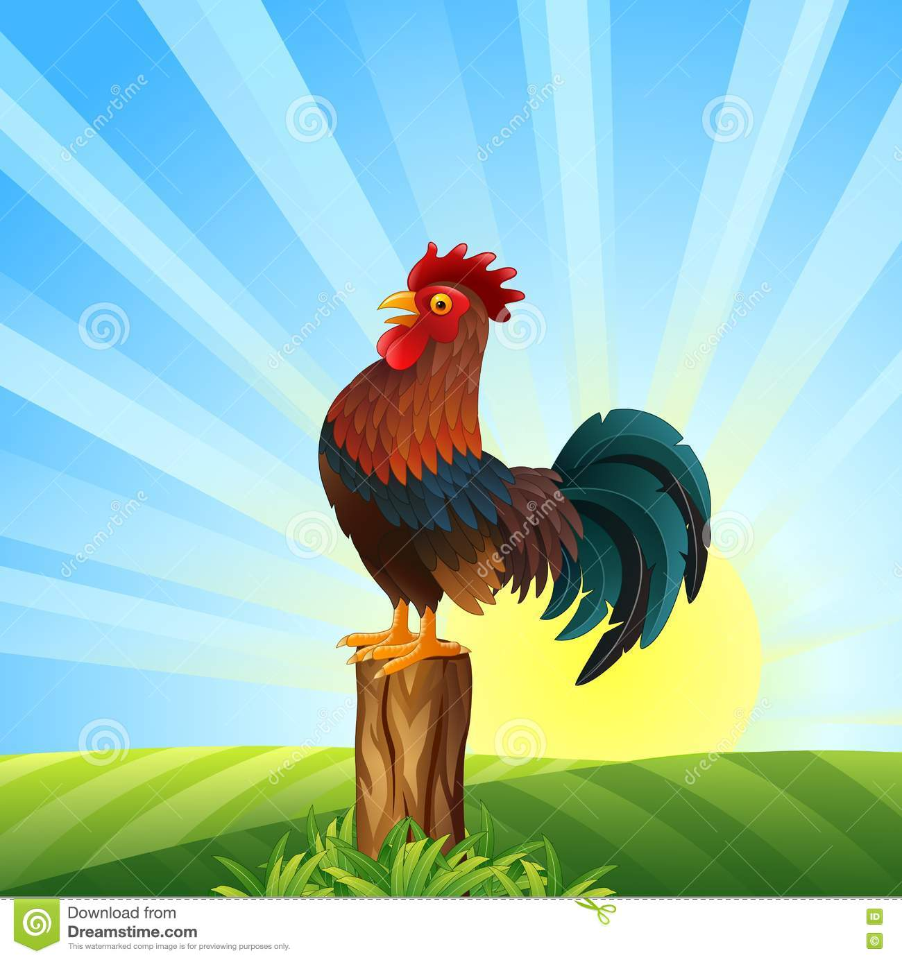 Cartoon Rooster Crowing At Dawn Stock Vector - Image: 77893669