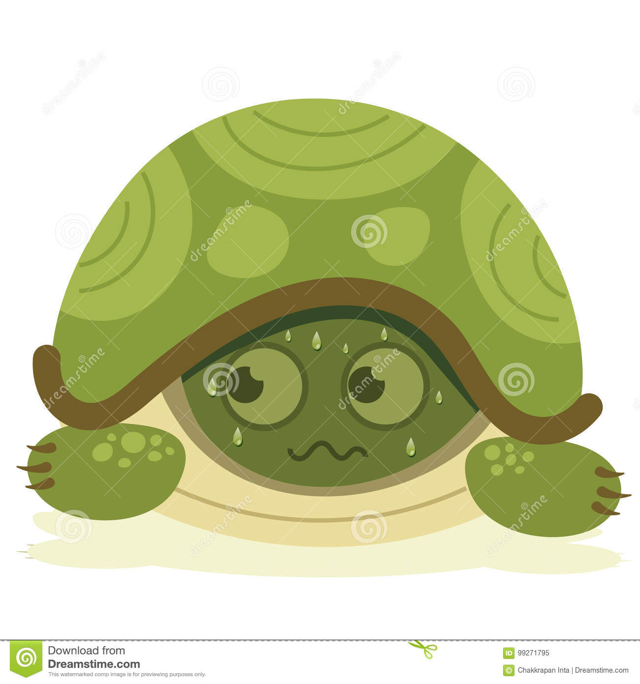 Cartoon Scared Turtle Stock Vector Illustration Of Shell 99271795