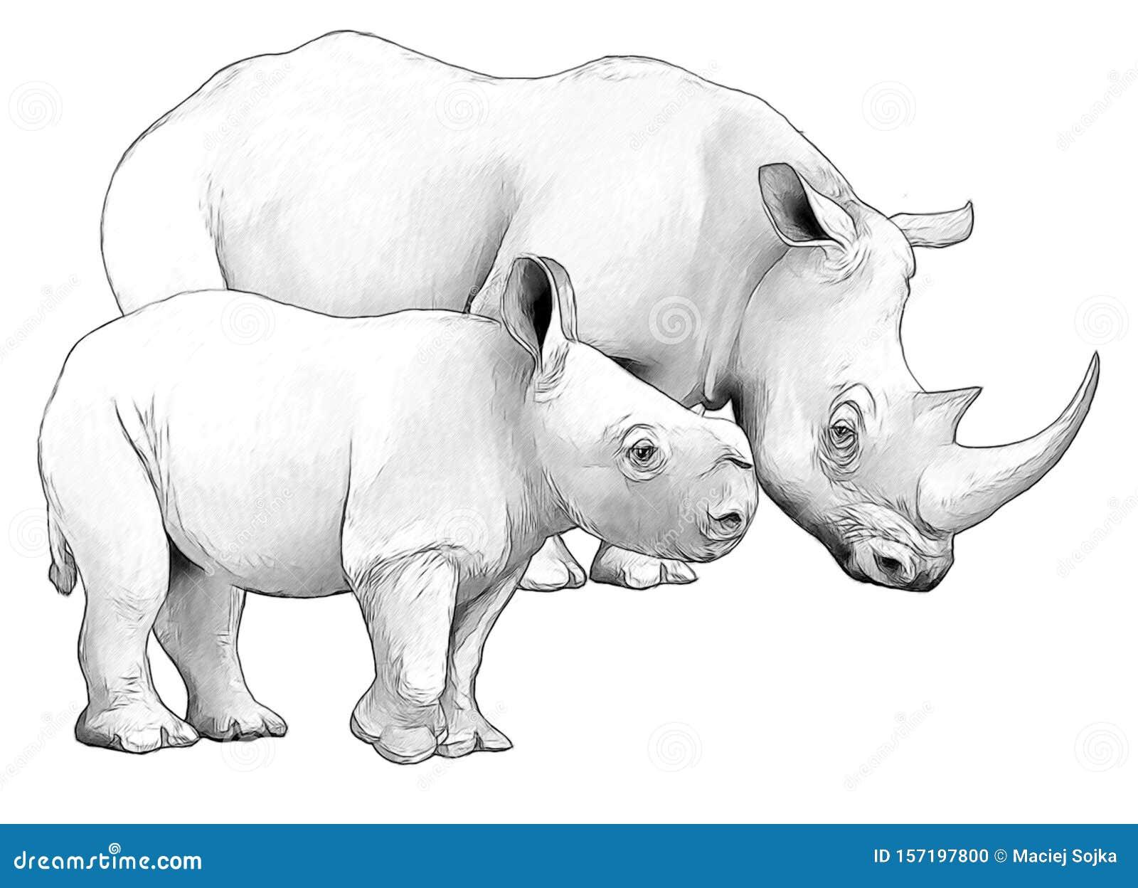 Cartoon Scene With Rhinoceros Safari Animal Coloring Page Stock Illustration Illustration Of Nature Mammal 157197800