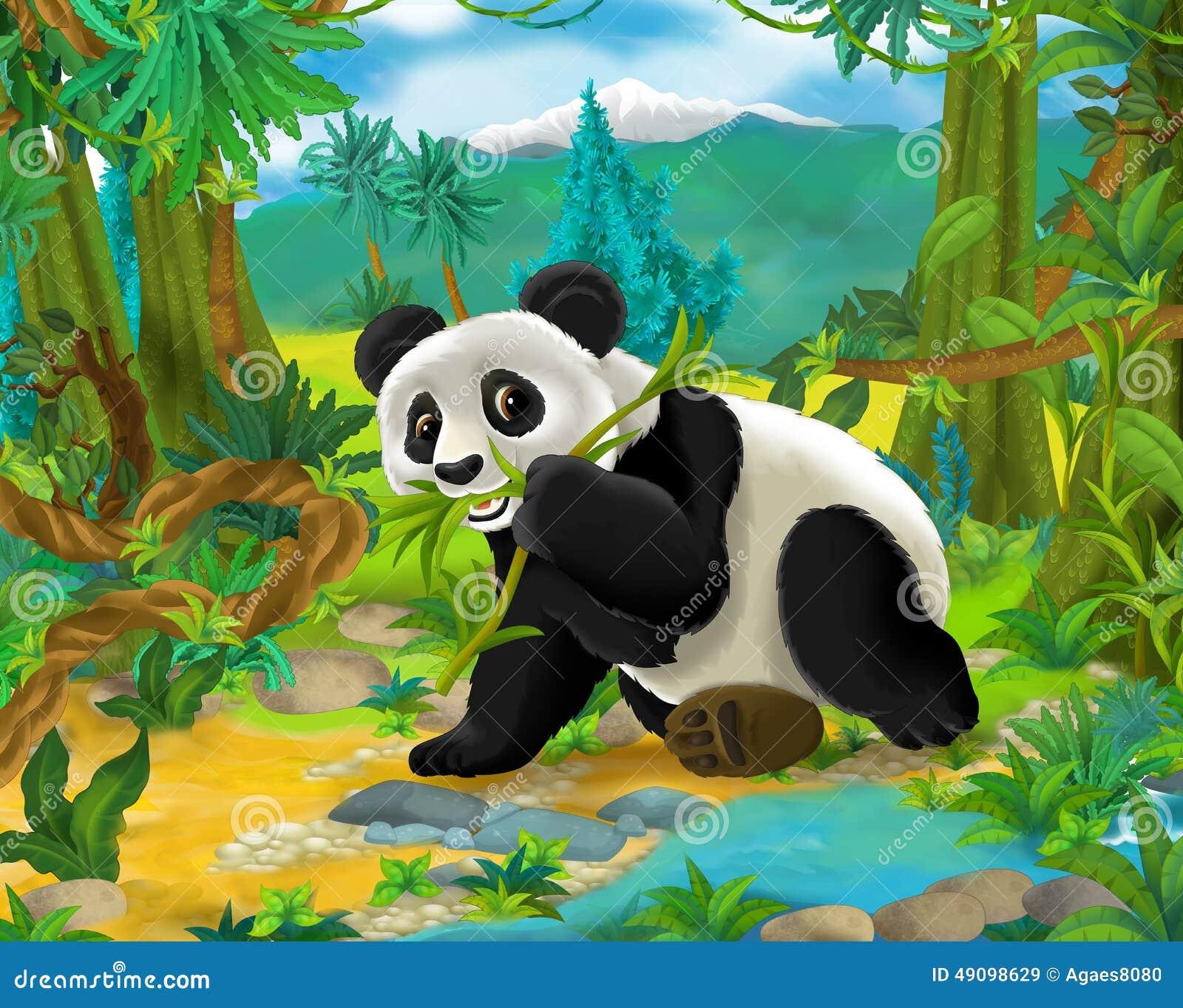 Cartoon Scene - Wild Asia Animals - Panda Bear Stock ... - photo#12