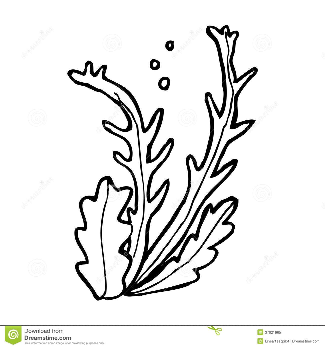 Cartoon Seaweed Stock Illustration Illustration Of Drawn