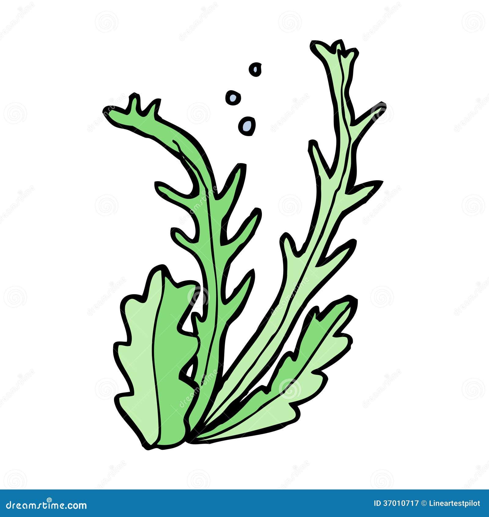 Cartoon Seaweed Clipart cartoon seaweed Royalty Free