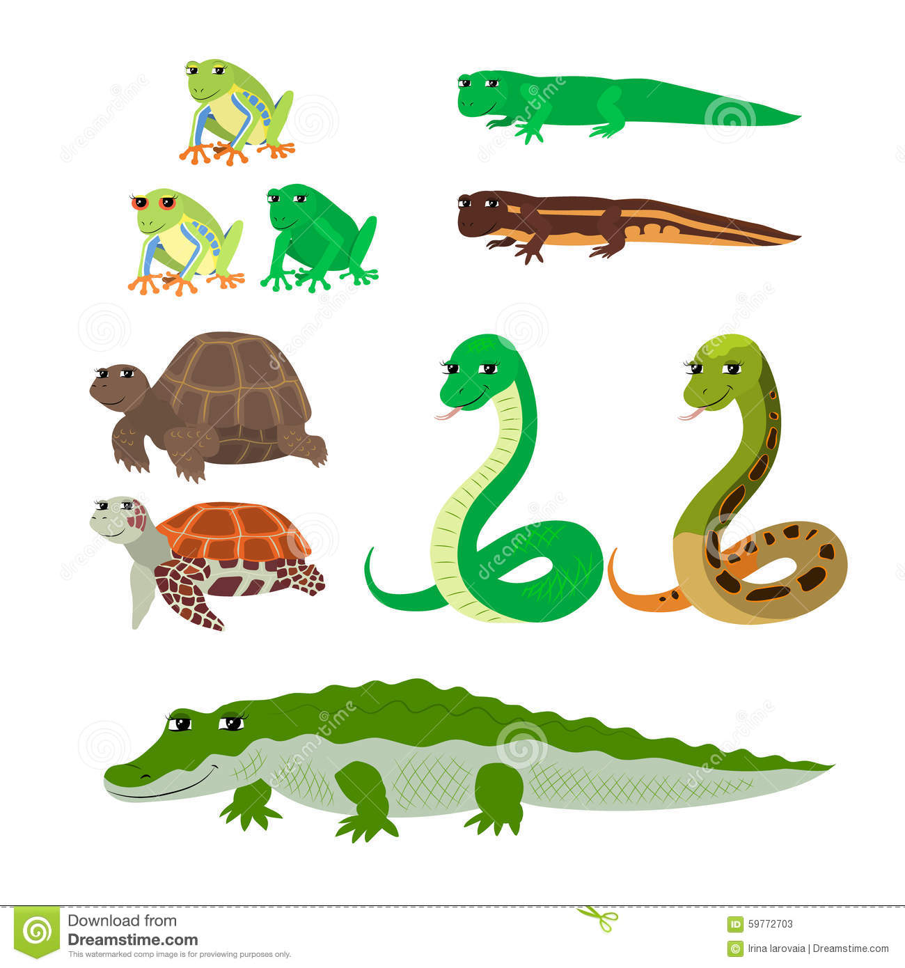 cartoon set tree frog newt aquatic turtle snake crocodile stock