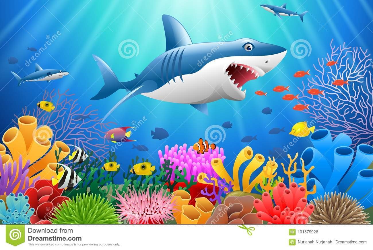 cartoon shark with coral stock vector illustration of lake 101579926
