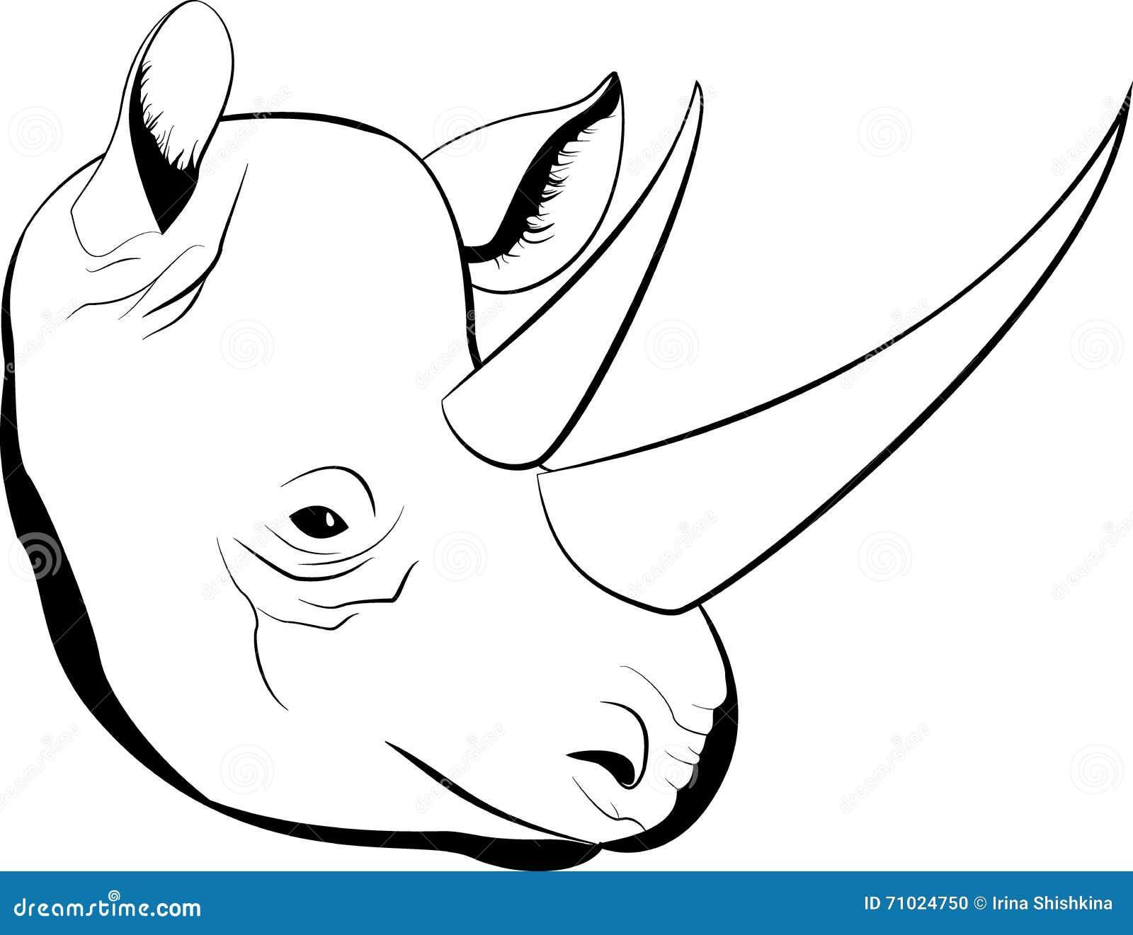 Image Gallery simple rhino
