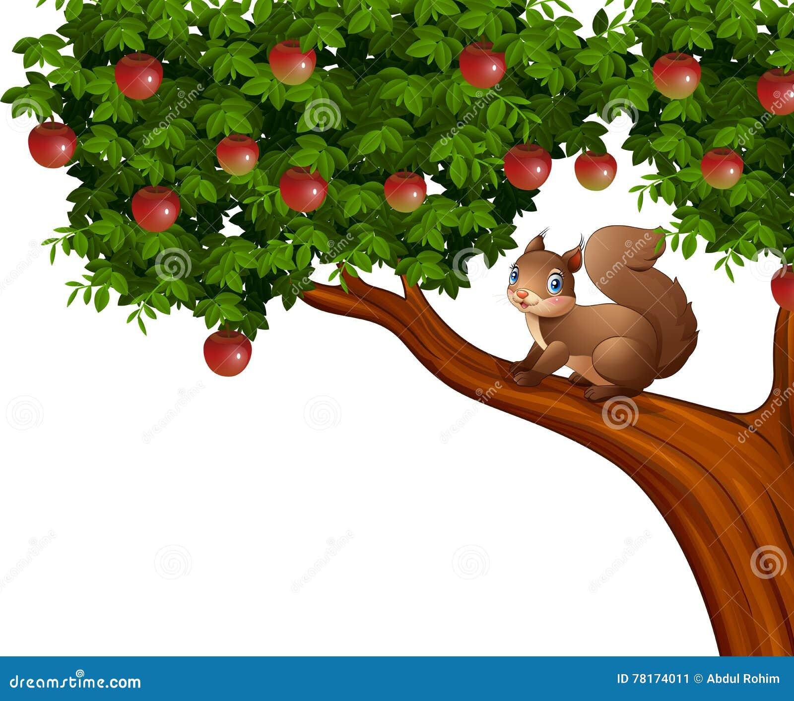 Cartoon Squirrel On Apple Tree Stock Vector - Illustration of nature ...