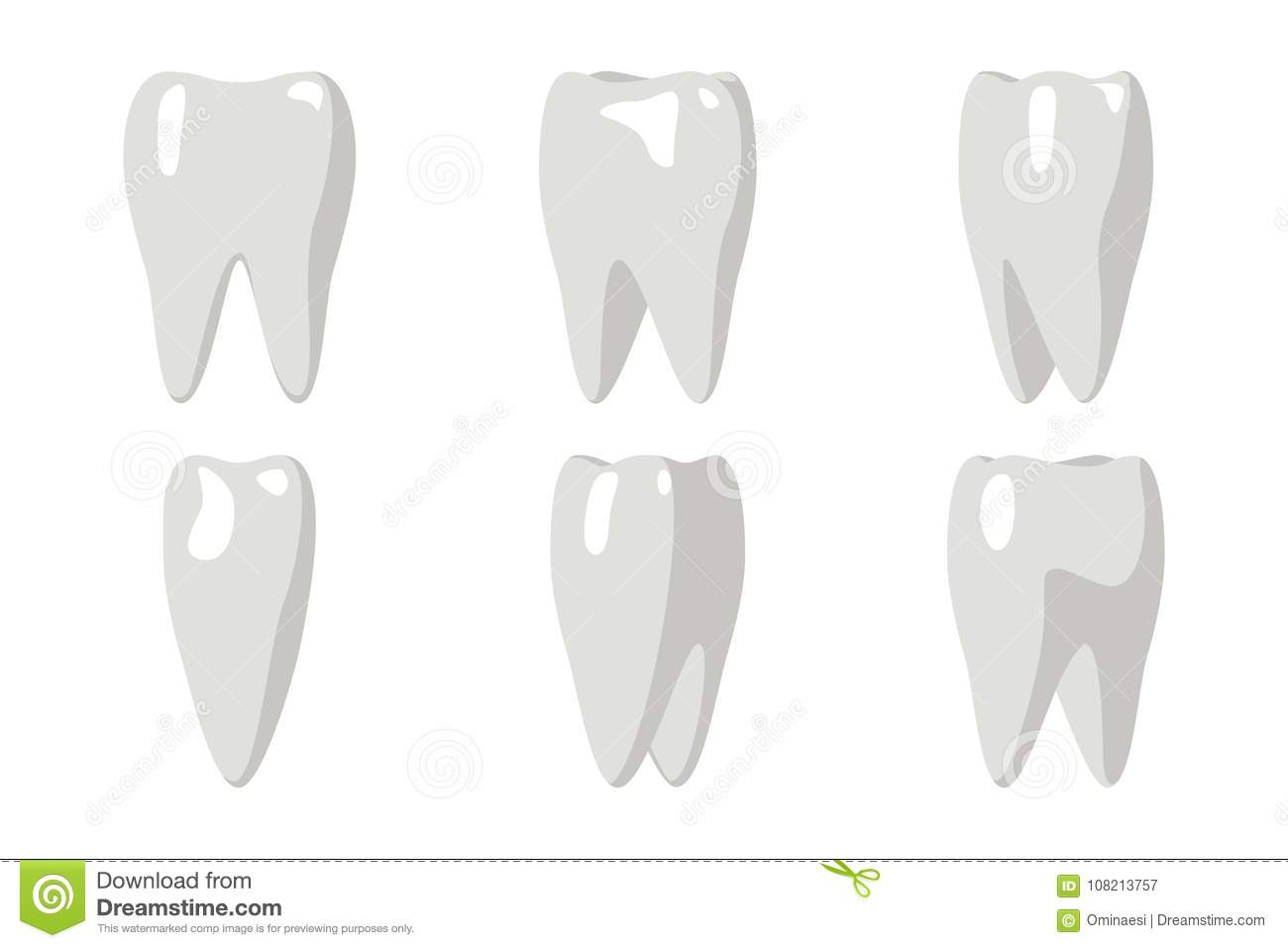 Download Cartoon Tooth Rotation Animation Frames 3d Stomatology Dental Poster Flat Design Isolated Icon Template Transperent