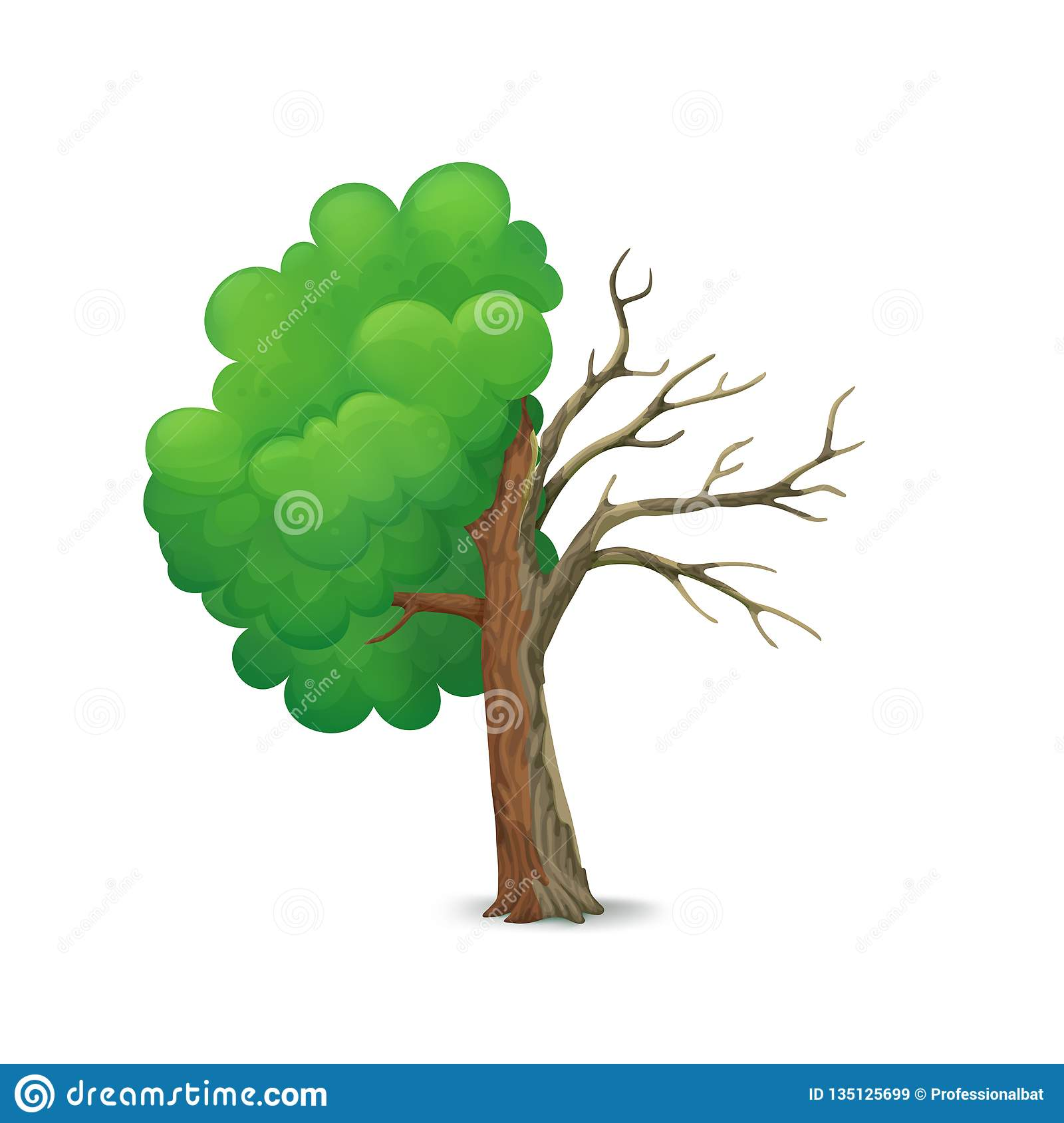 Cartoon tree split in half isolated on a white background. Half with lush green foliage and leafless, dying half.