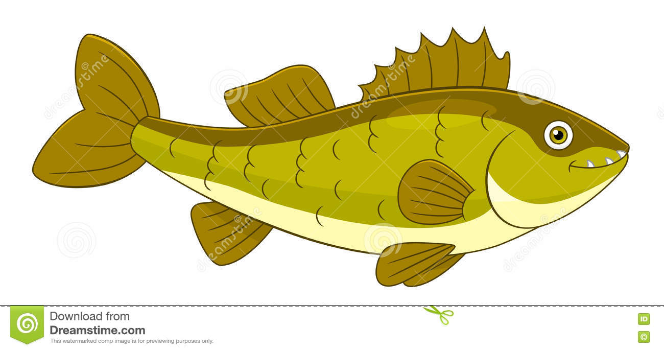walleye stock illustrations 317 walleye stock illustrations rh dreamstime com Walleye Clip Art Black and White Walleye Black and White