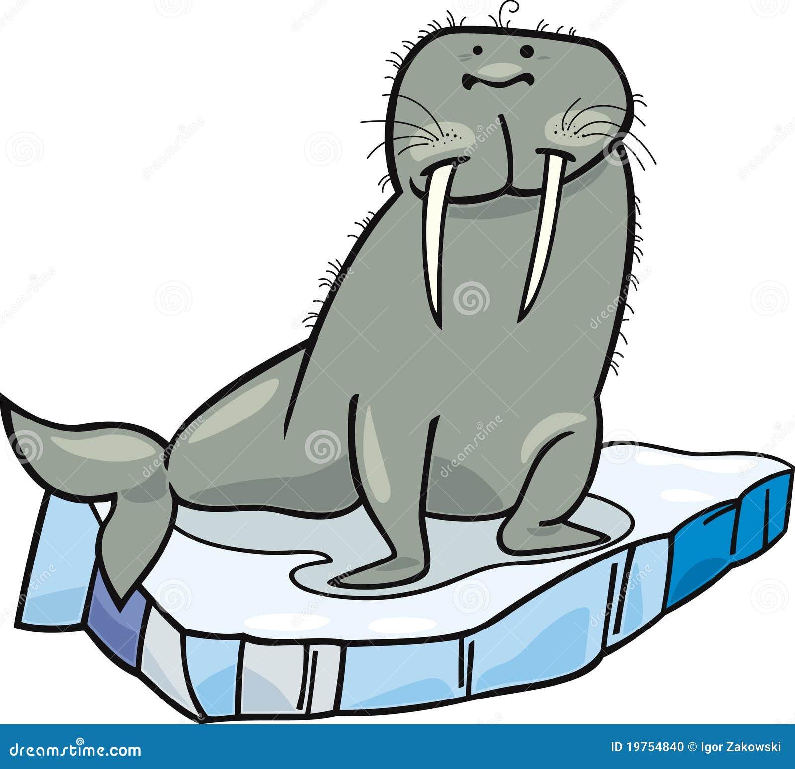 Cartoon walrus on floating ice stock vector illustration