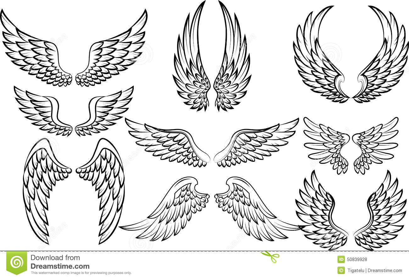Cartoon Wings Collection Set Stock Vector - Image: 50839928Dove Bird Drawing Tattoo