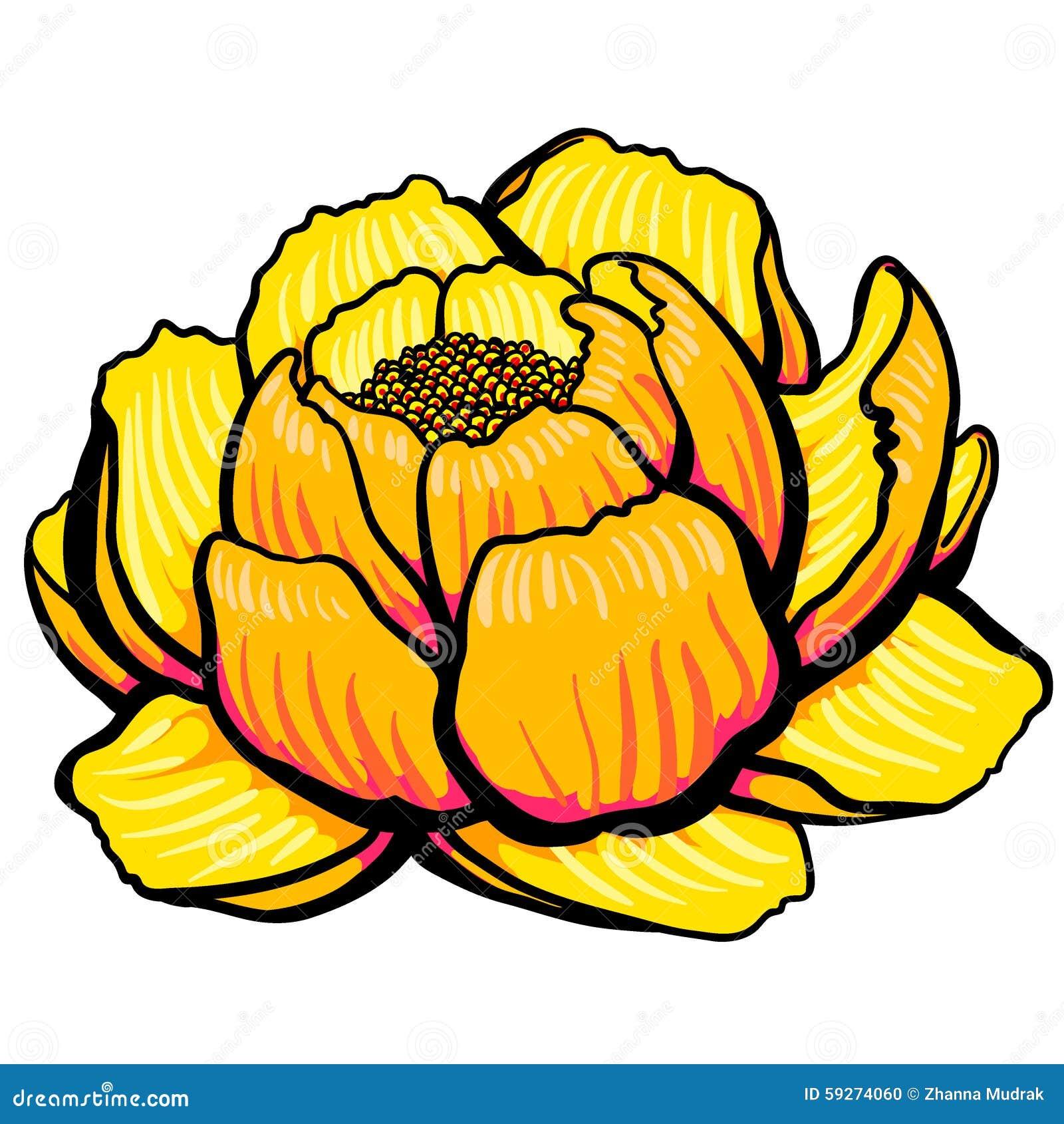Cartoon yellow lily flower open stock illustration illustration of cartoon yellow lily flower open izmirmasajfo